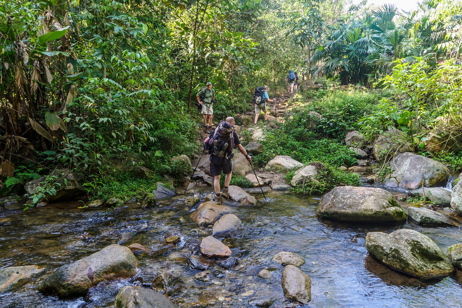 Best time to see Ciudad Perdida Trek in Colombia 2020