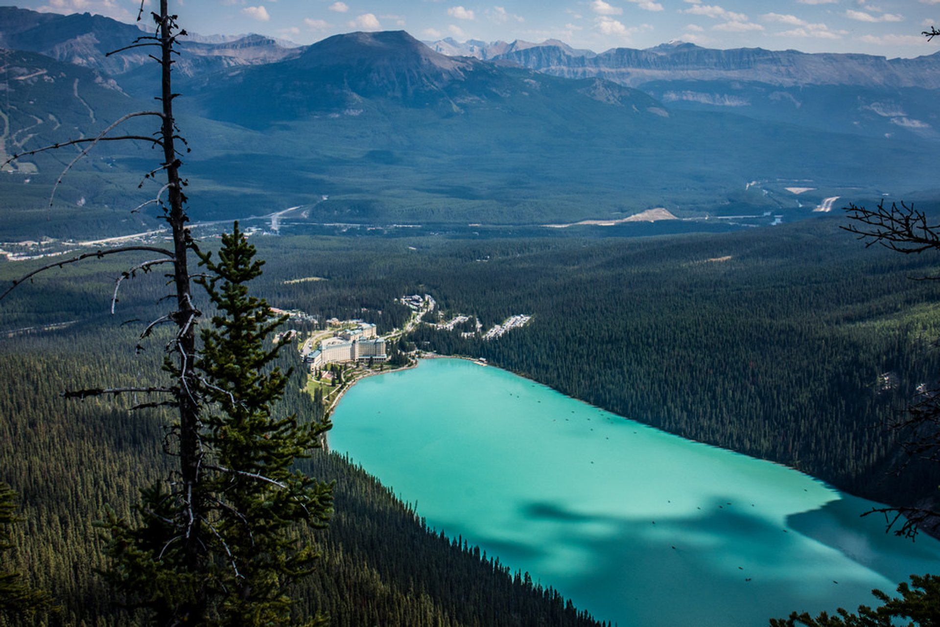 View of Lake Louise from the Big Beehive Hike 2020