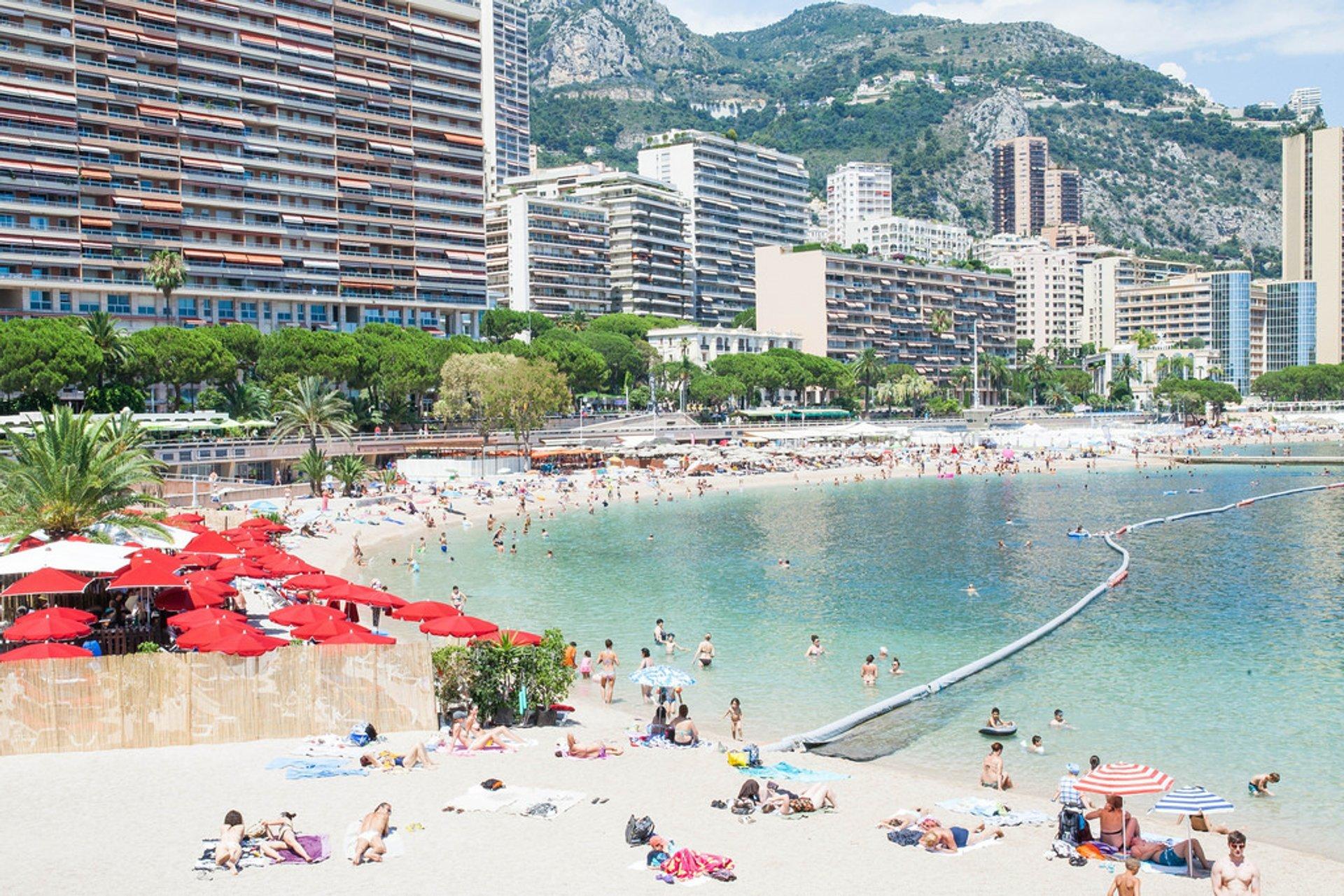 Monte Carlo 2020