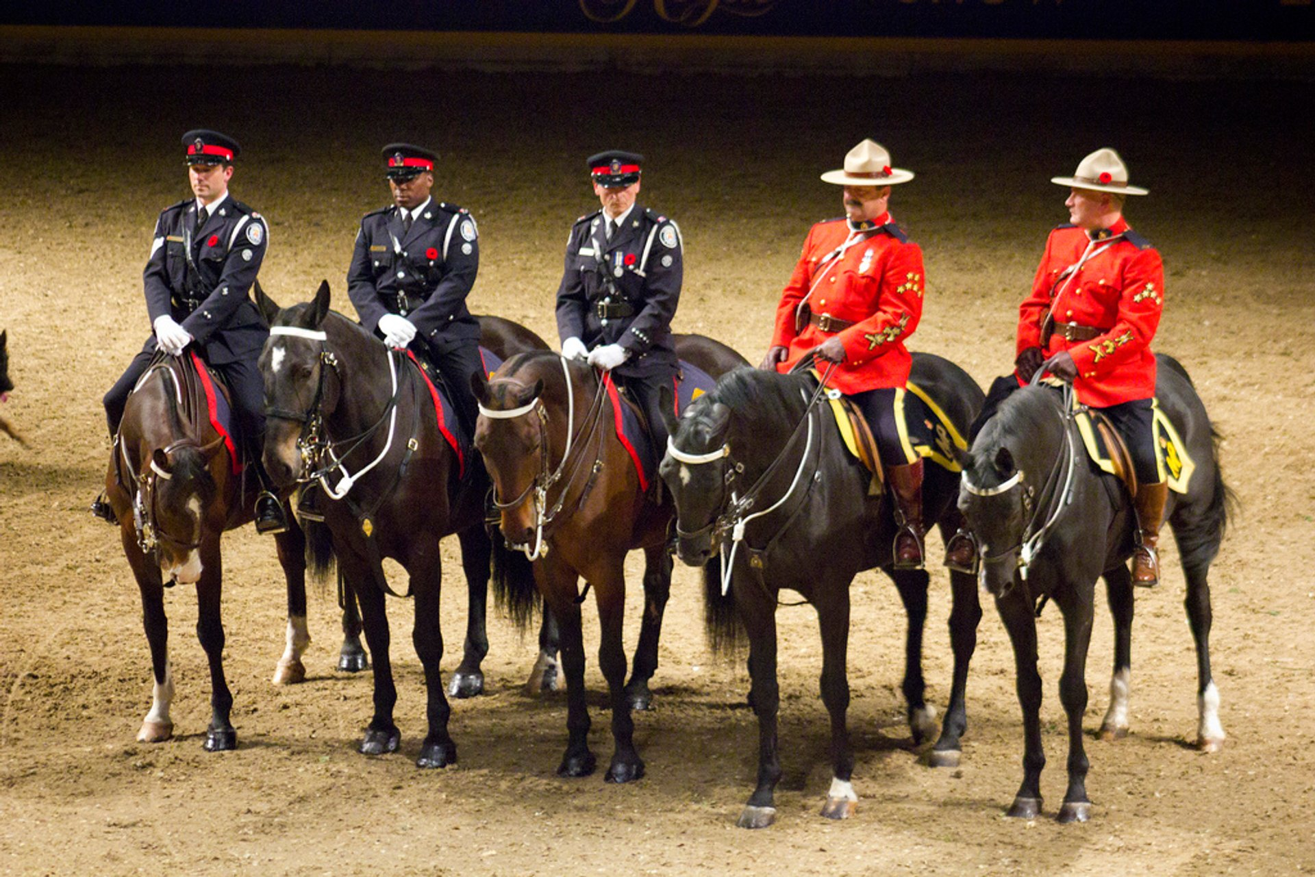 The Royal Agricultural Winter Fair in Toronto - Best Season 2020