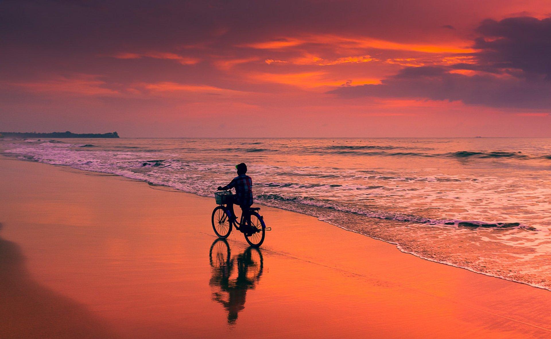Chaungtha Beach