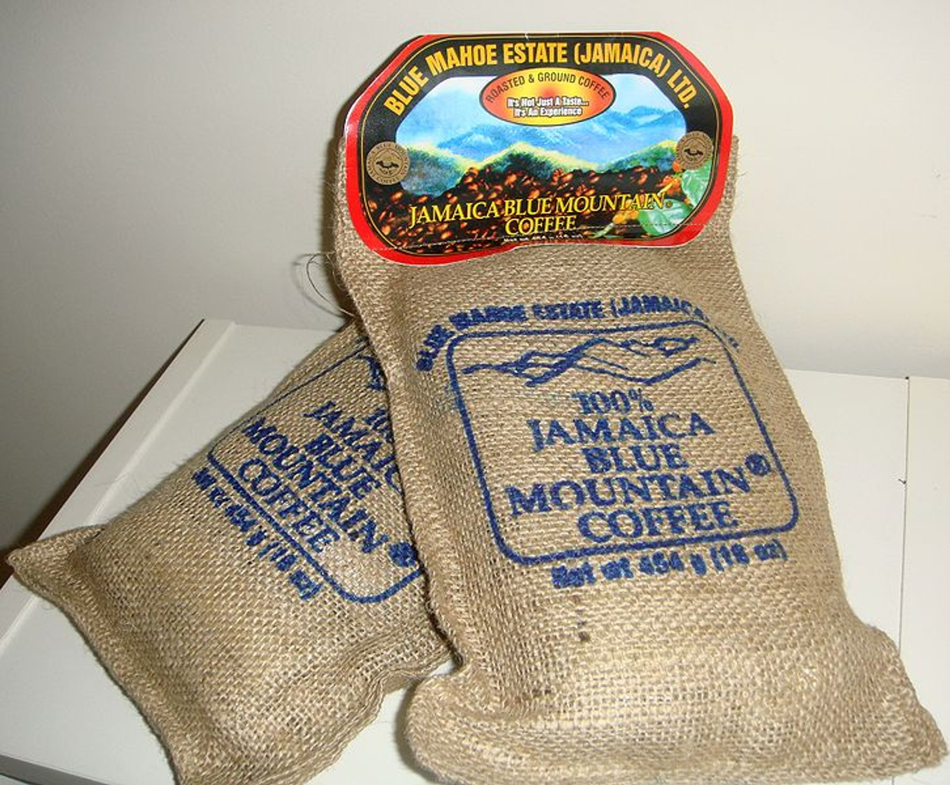 Blue Mountain Coffee Harvest in Jamaica - Best Season 2020