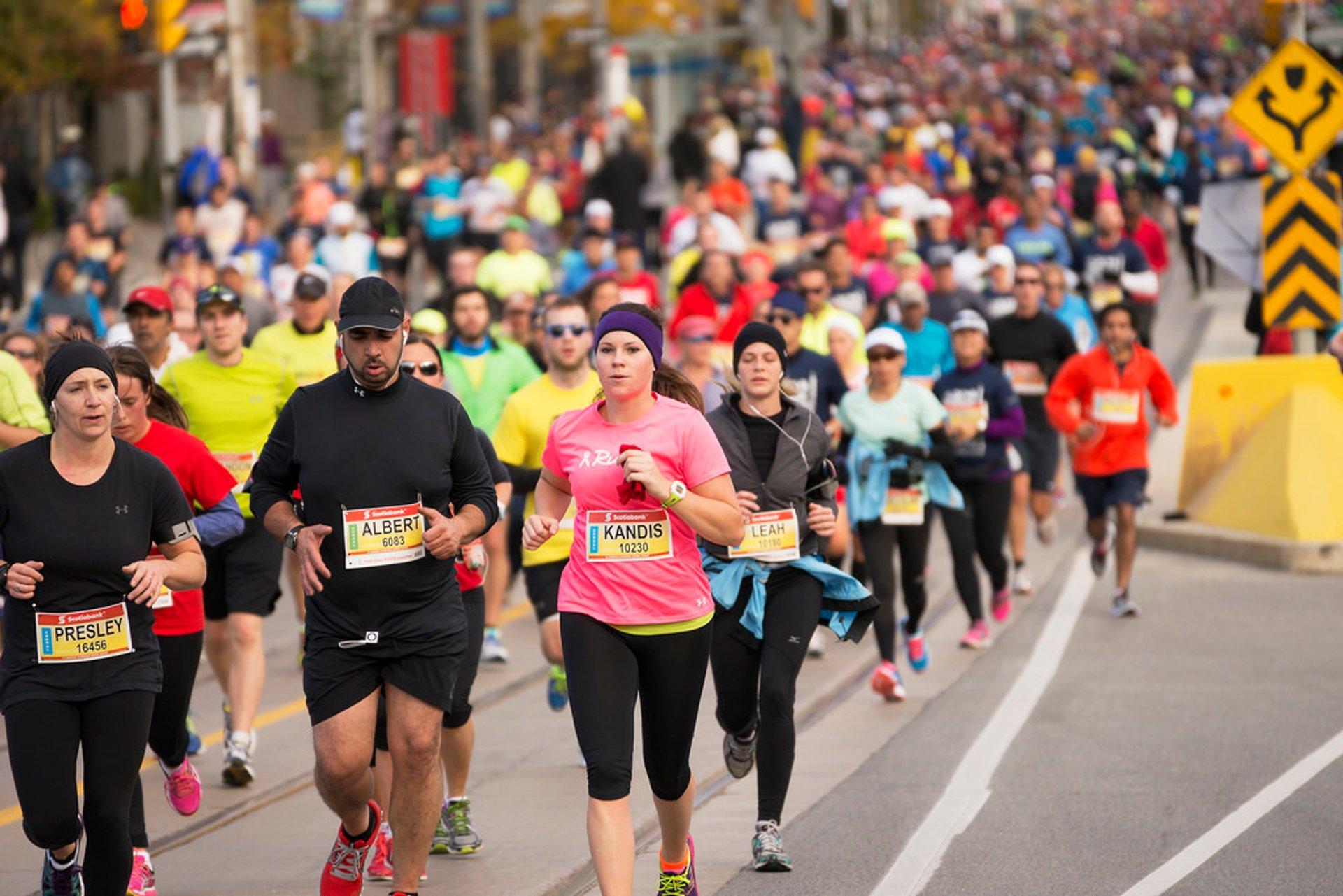 Toronto Waterfront Marathon in Toronto 2020 - Best Time