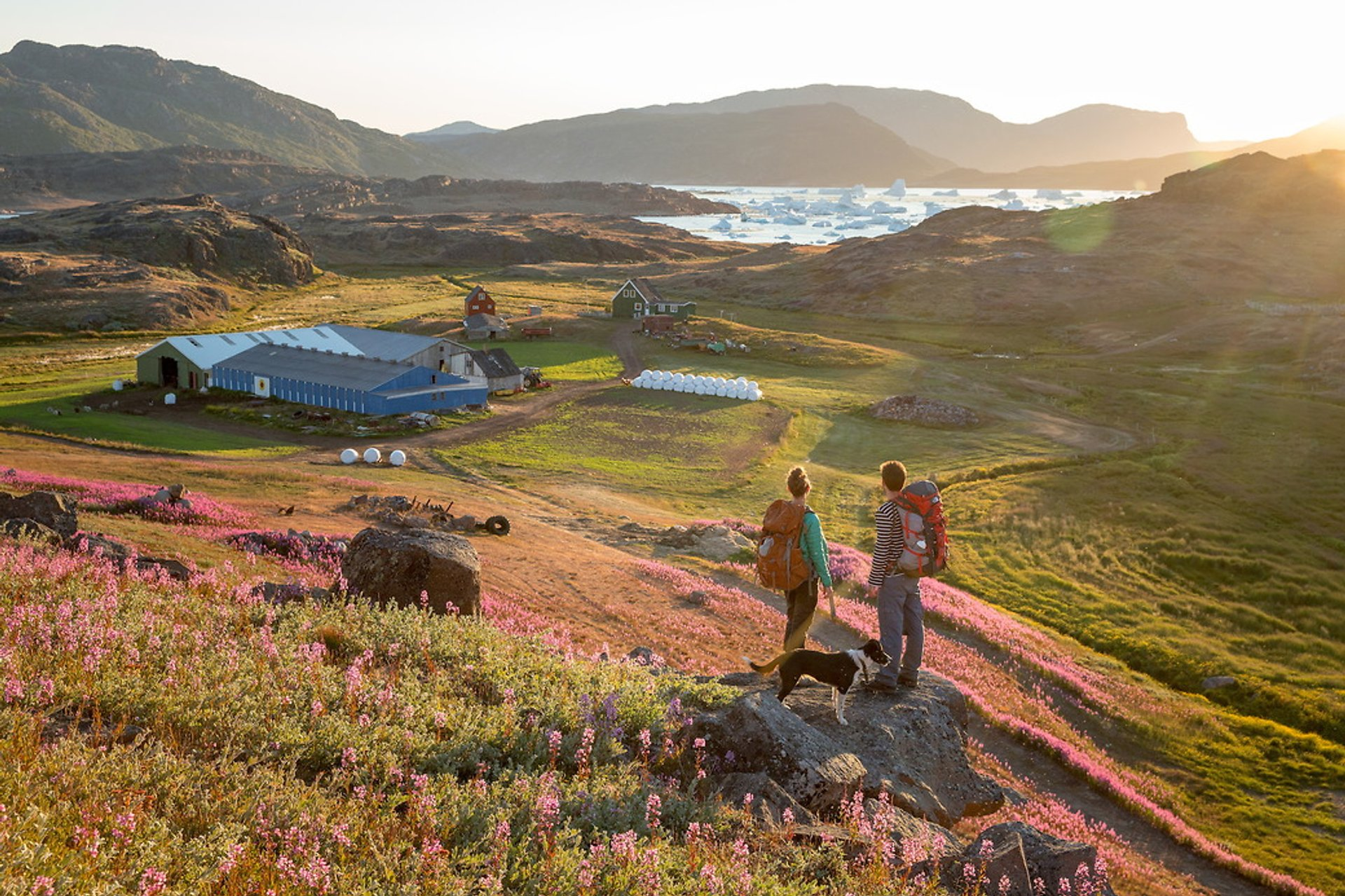 Hiking in Greenland - Best Time