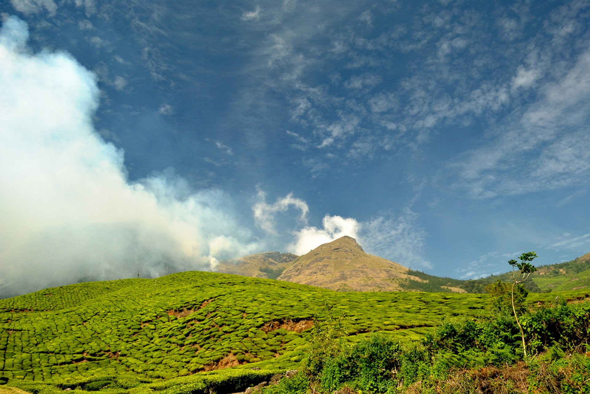 Kolukkumalai Tea Estate in India 2020 - Best Time
