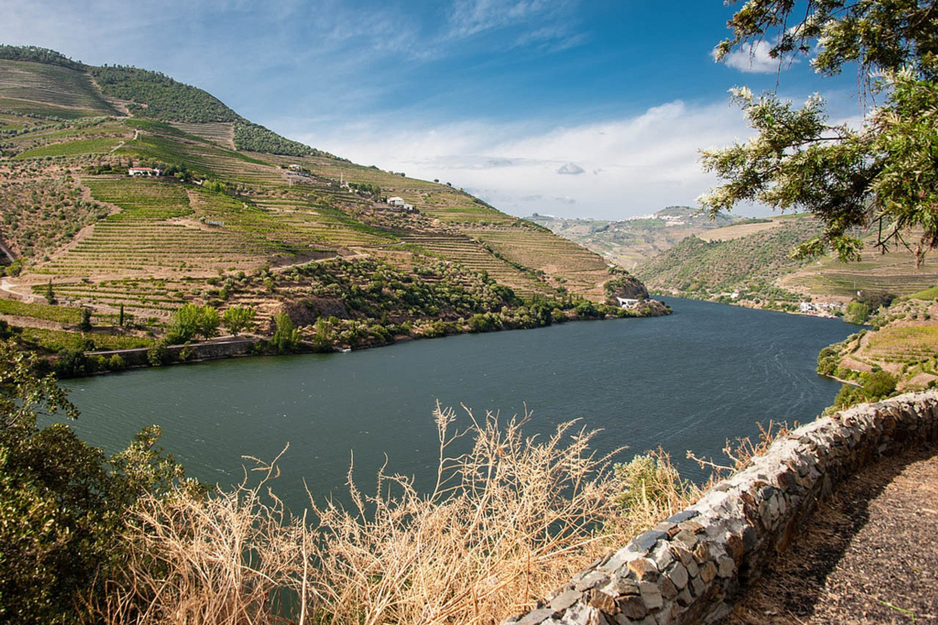 Best time for Exploring Douro Valley in Portugal 2020