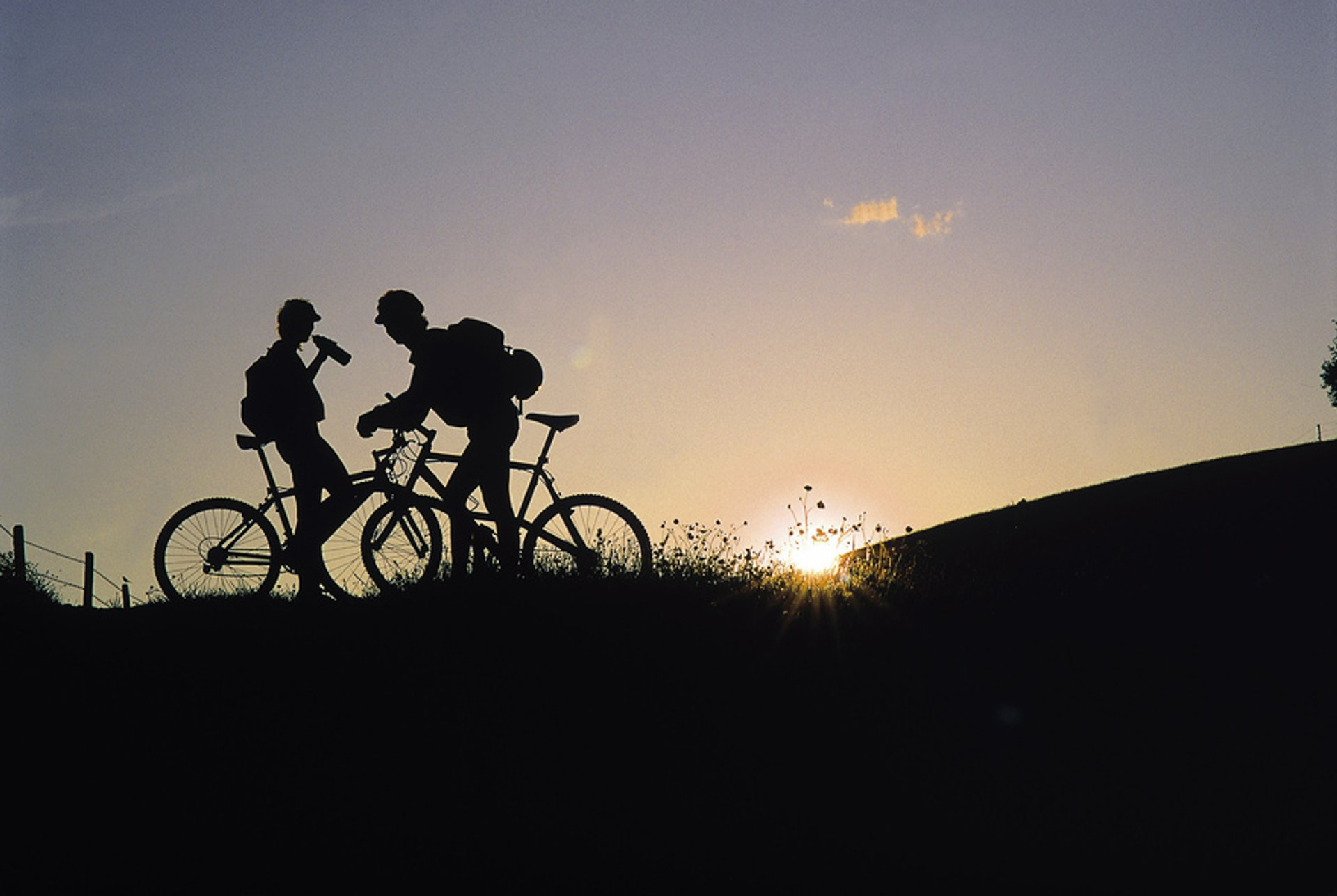 Mountain Biking in Austria 2020 - Best Time