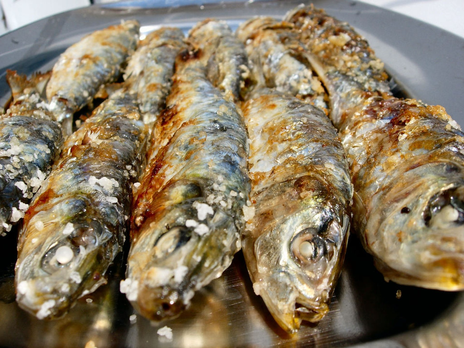 Sardines Season in Portugal - Best Season 2020