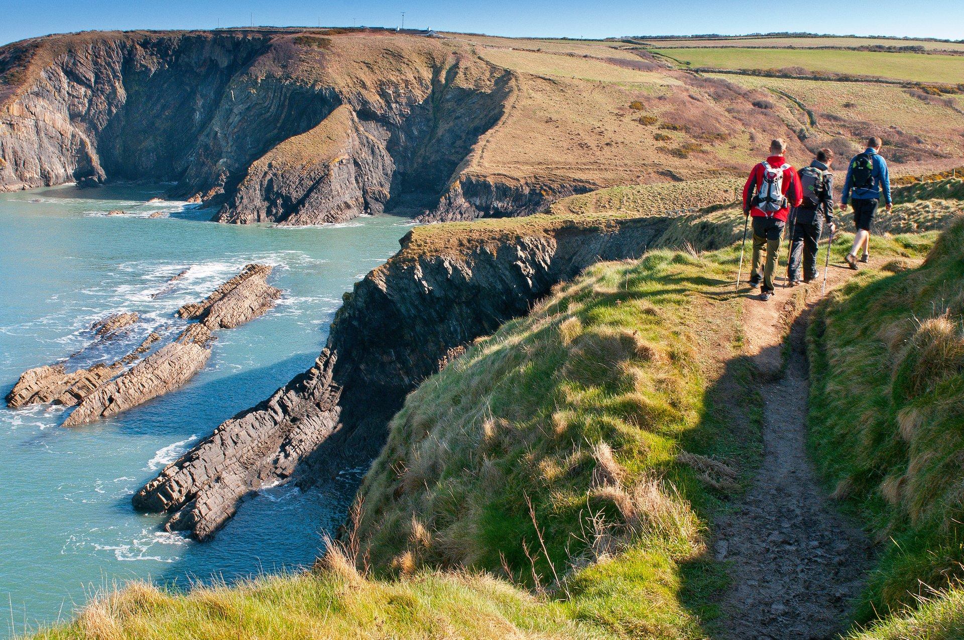 Walkers on Path near Ceibwr Bay, Pembrokeshire, Wales Coast Path 2020