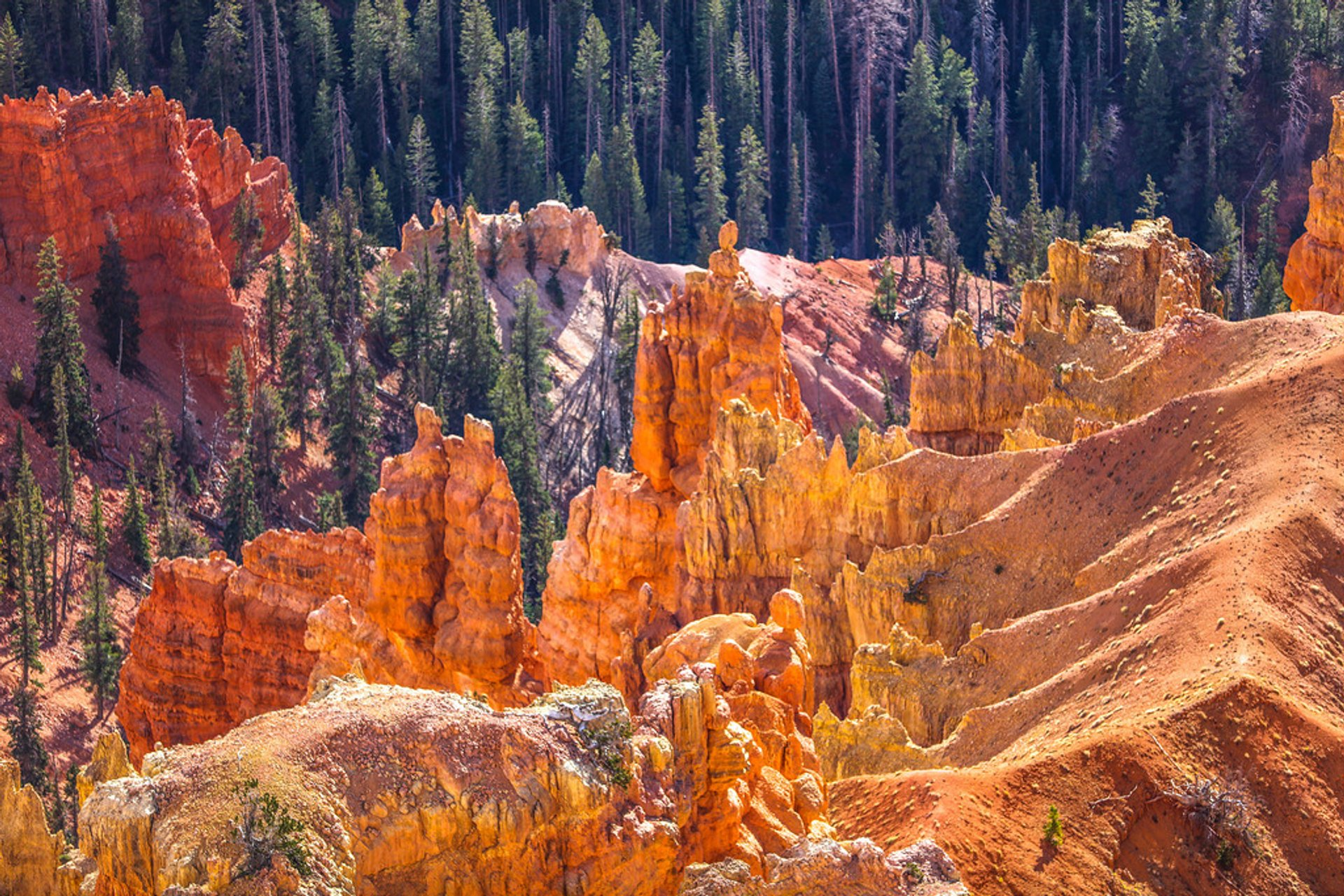 Cedar Breaks National Monument in Utah - Best Season 2020