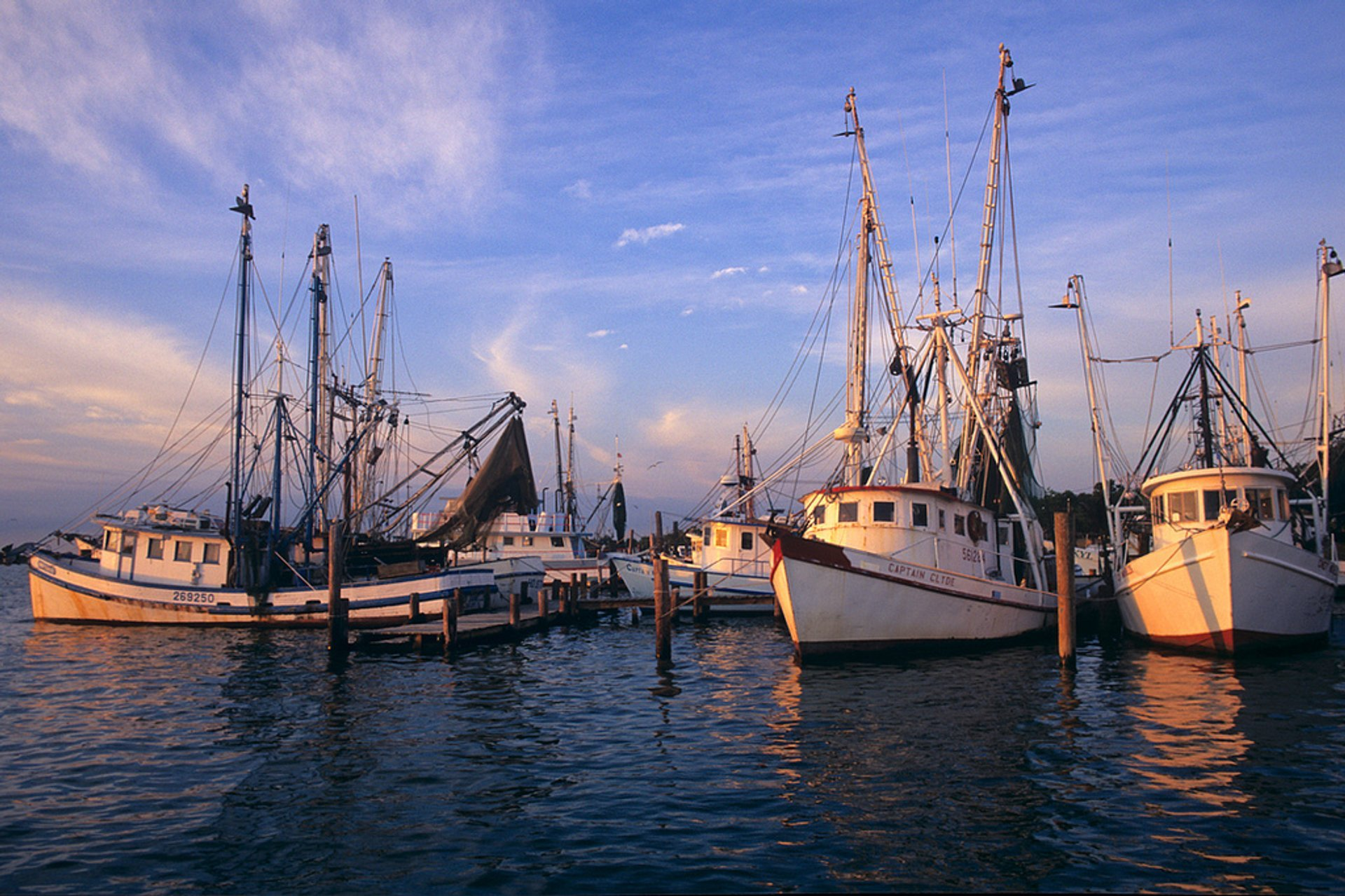 Galveston Bay shrimpers, Bacliff, Texas 2020