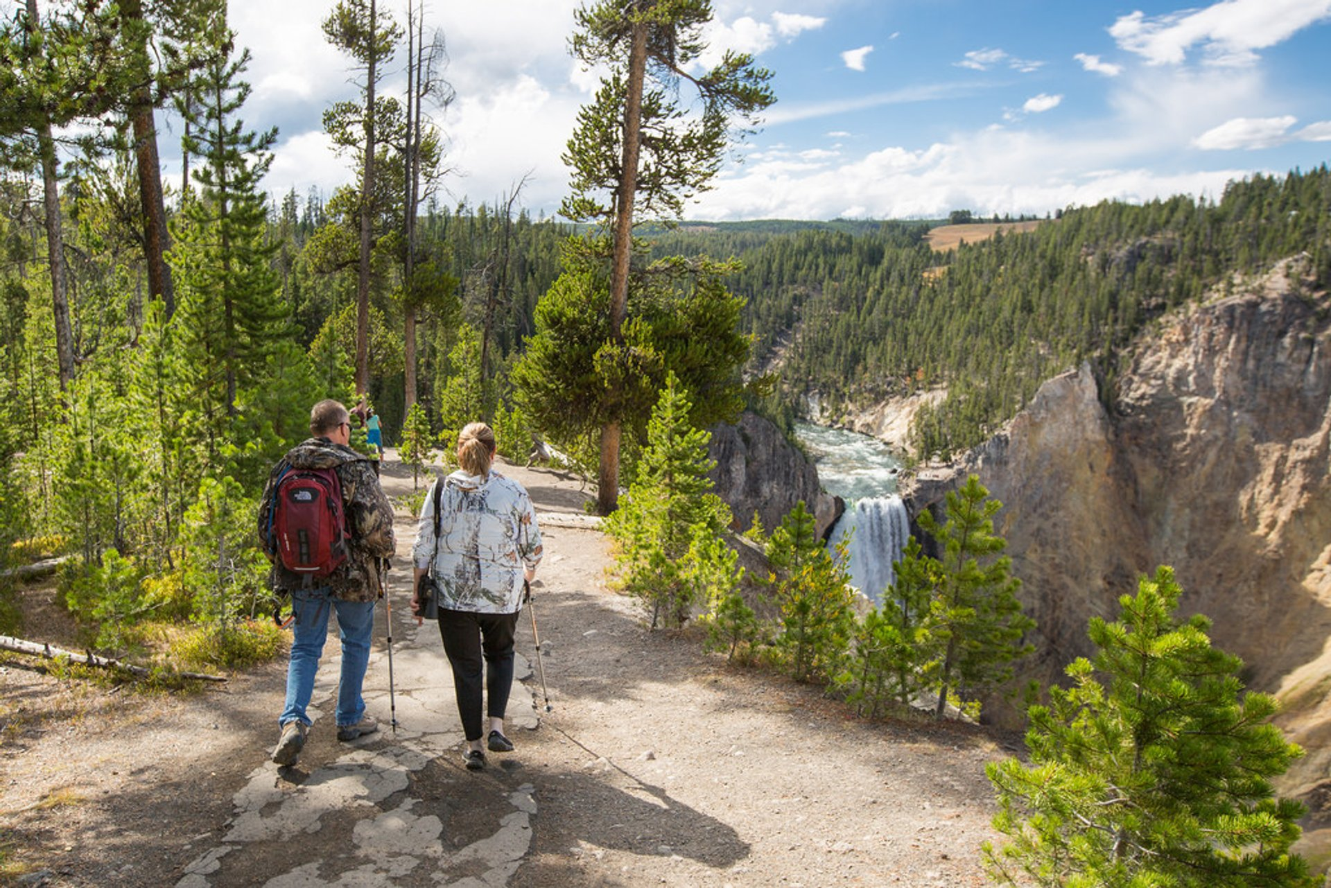 Exploring the South Rim Trail at Canyon with view at Lower Falls  2019