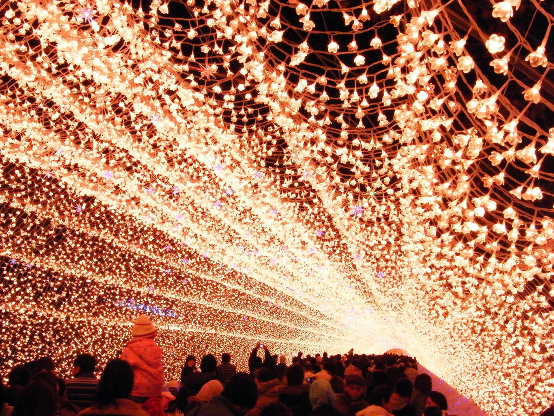 Best time for Nabana No Sato Winter Illumination in Japan 2019