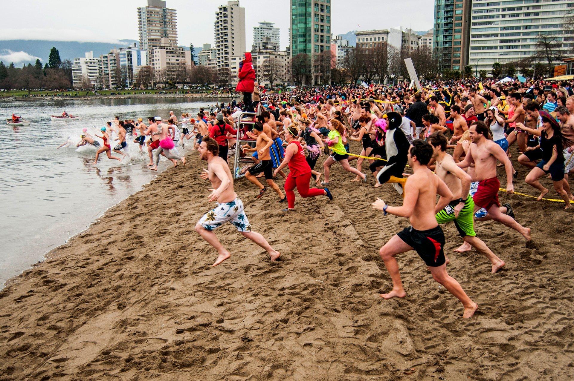 Polar Bear Swim in Vancouver 2019 - Best Time