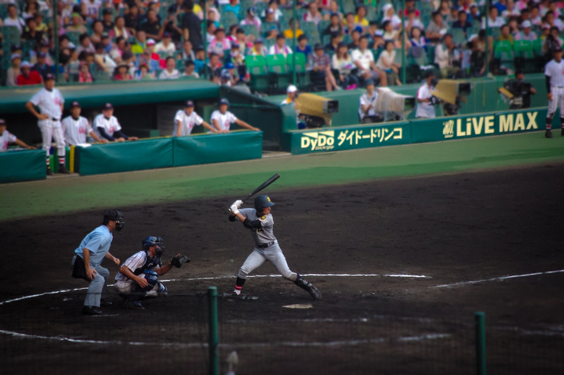 Best time for Baseball Season in Japan