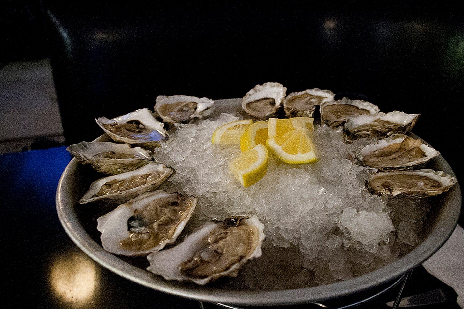 Oysters in Boston - Best Season 2020