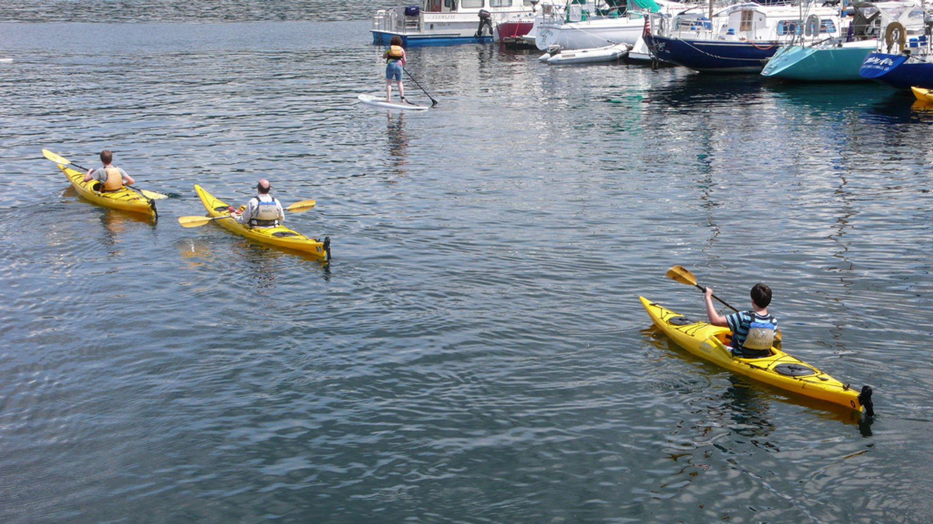 Kayaking on Lake Union from the Northwest Outdoor Center 2019