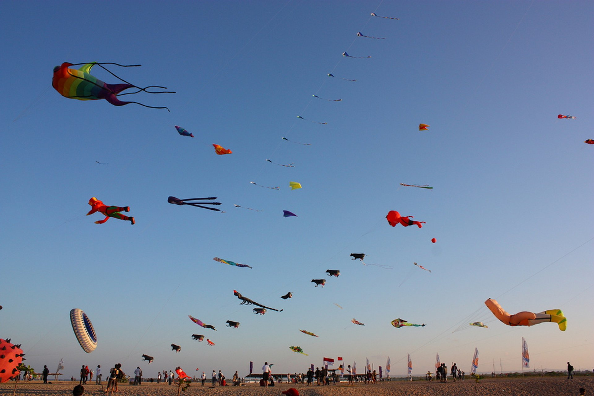 Image result for sanur kite festival