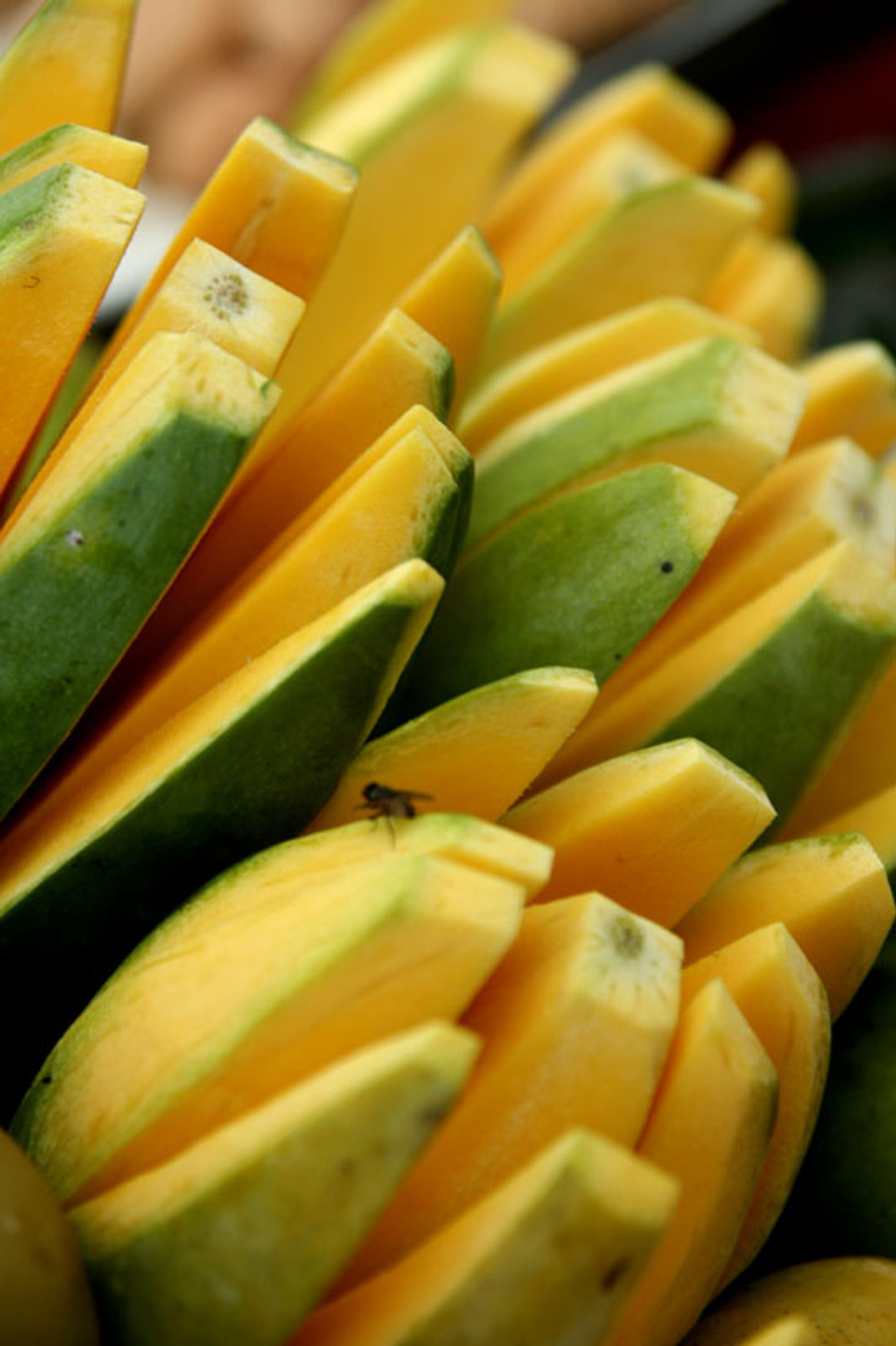 Best time for Mango Season in Cambodia