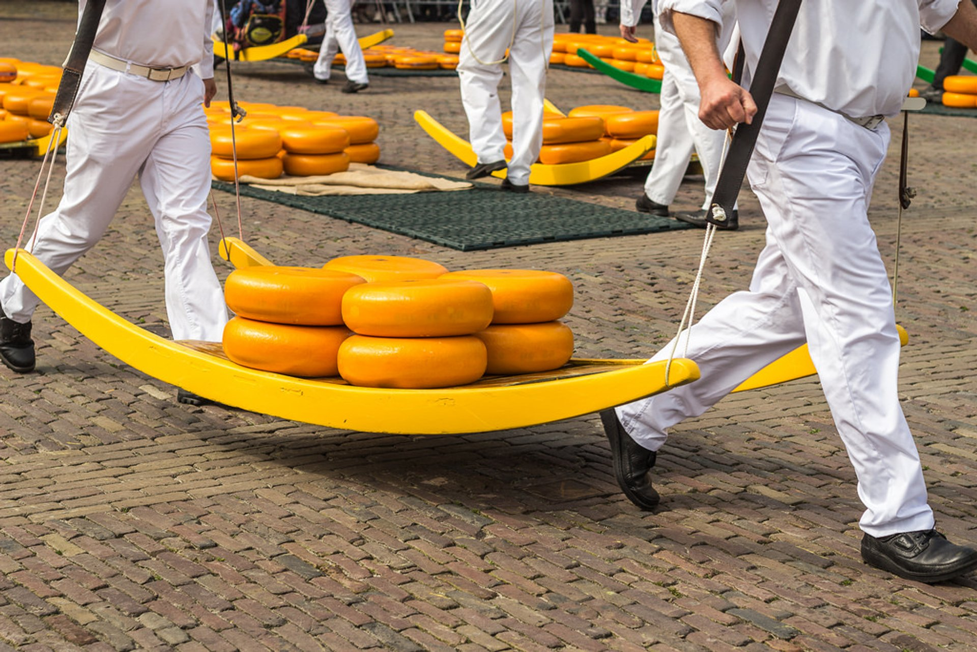 Alkmaar Cheese Market in The Netherlands 2020 - Best Time