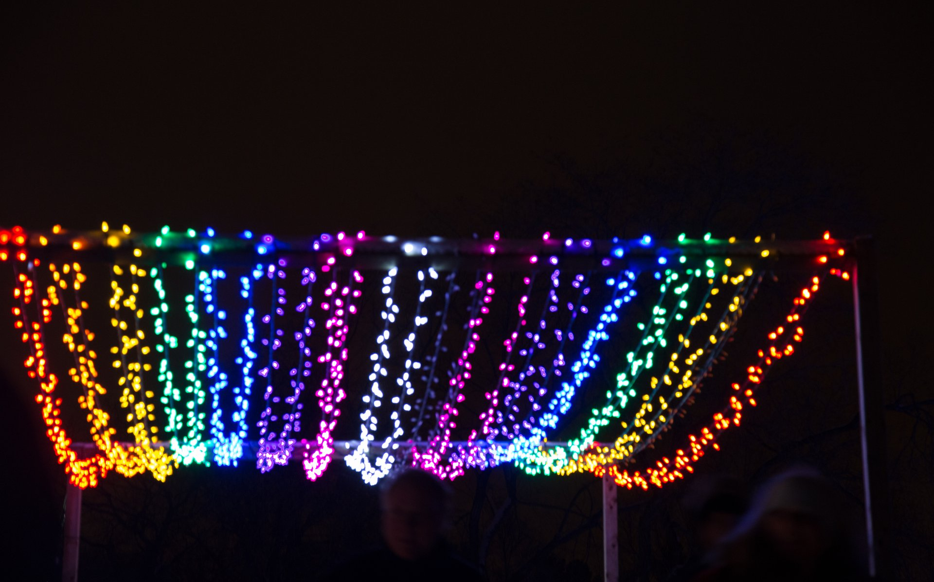 Festival of Lights at Edmonton Valley Zoo 2020