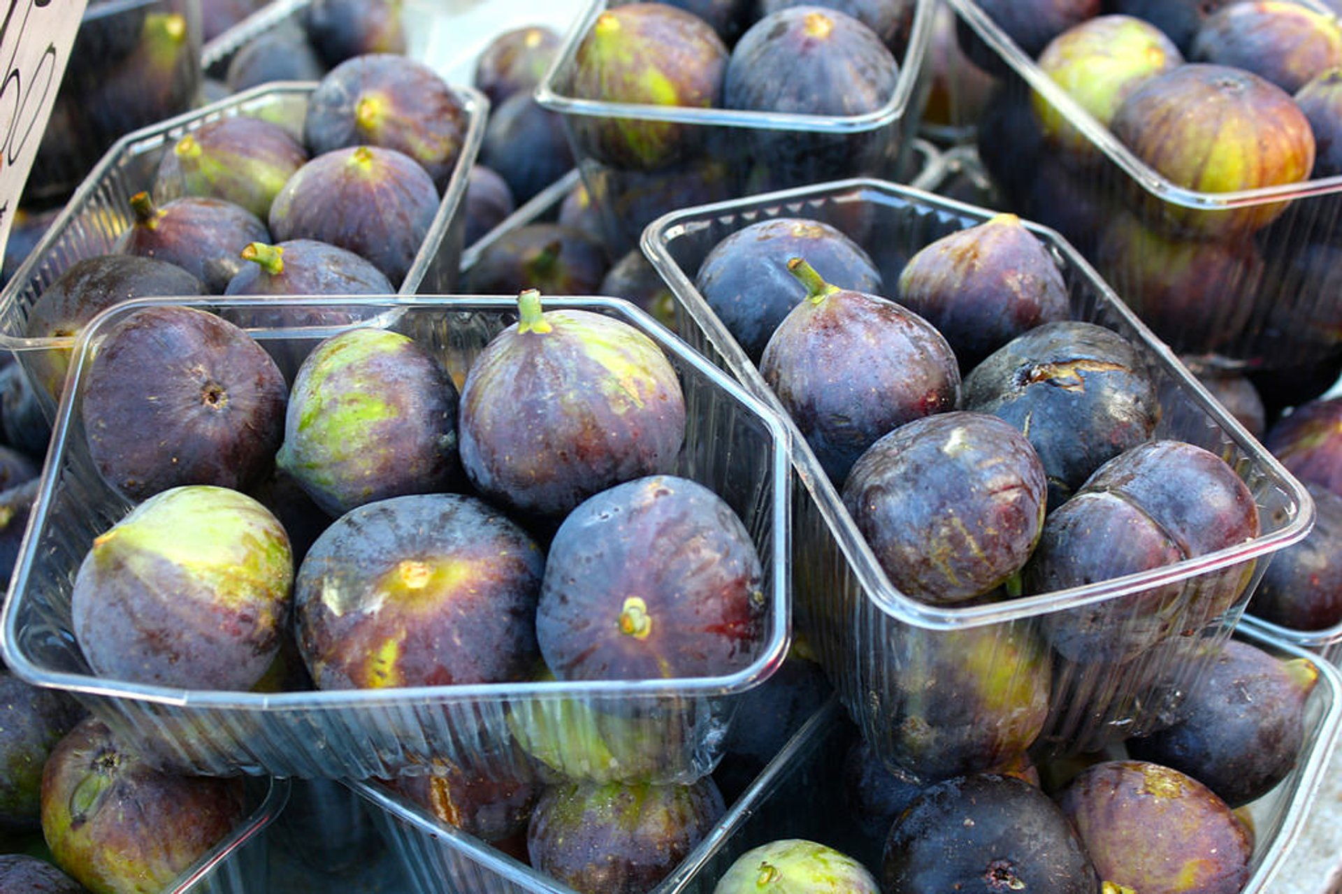 Figs in Athens - Best Time