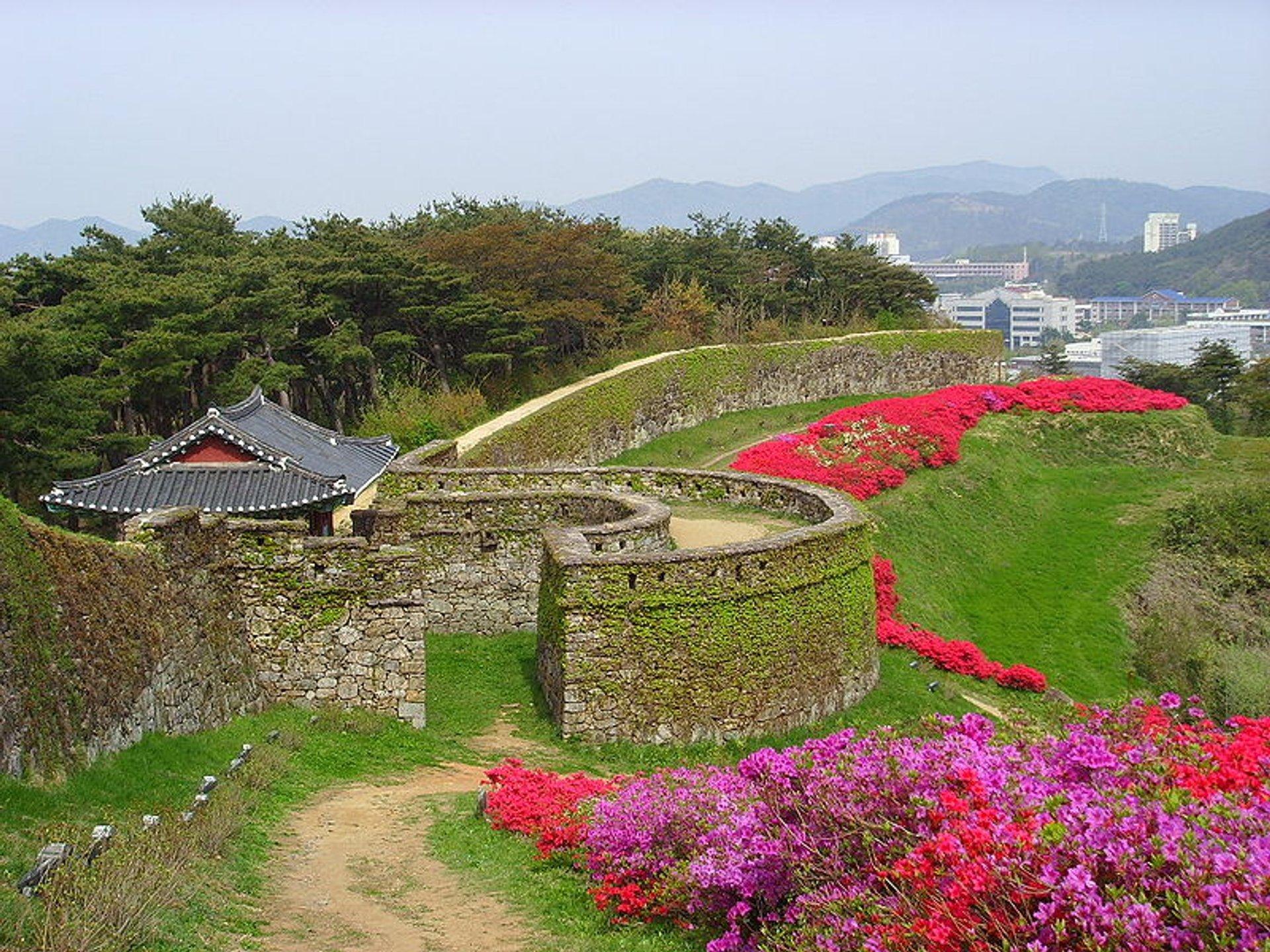 Gochang Moyang Fortress Festival in South Korea 2020 - Best Time