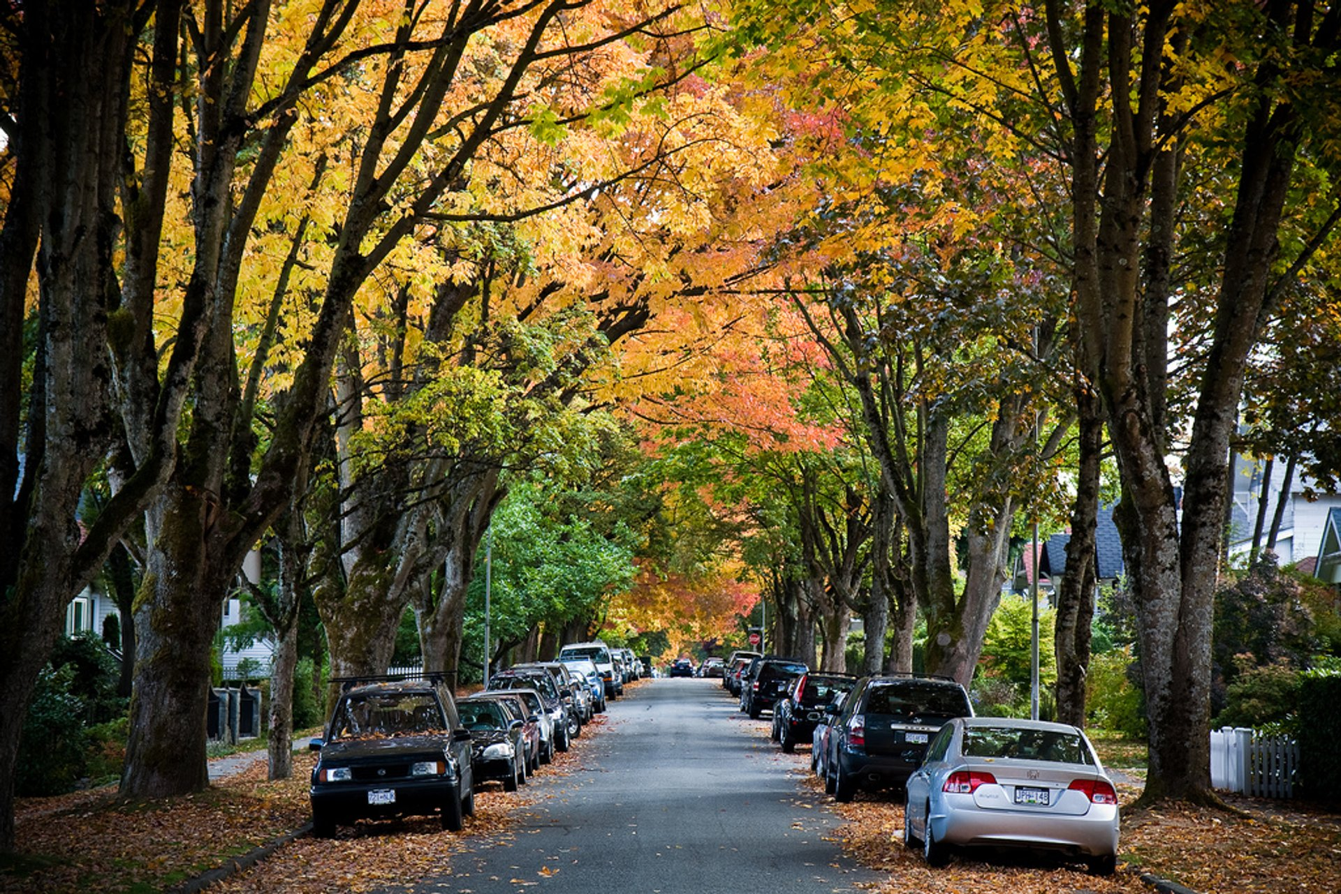 Autumn in Vancouver 2020 - Best Time