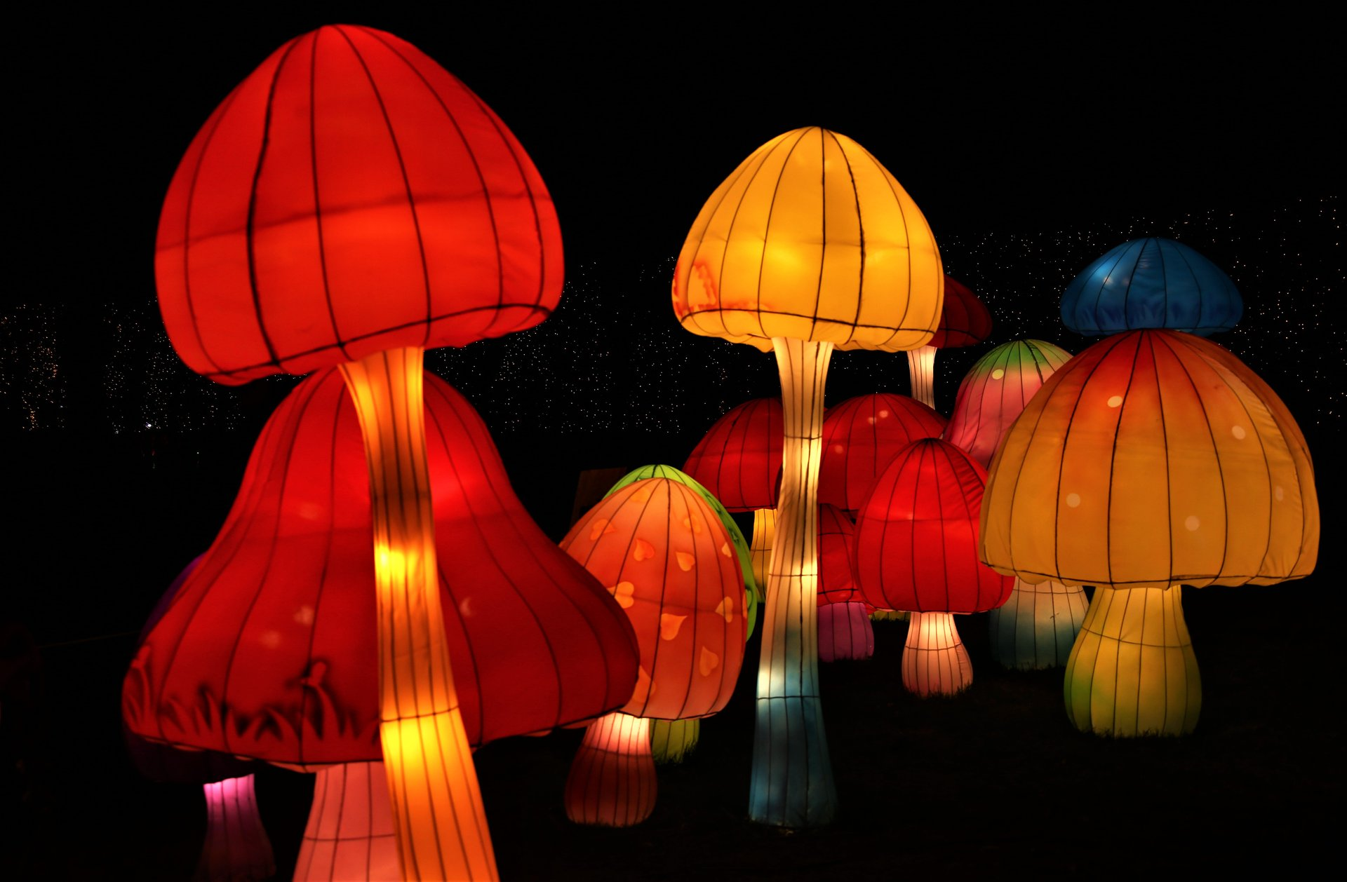 NYC Winter Lantern Festival in New York - Best Season 2020