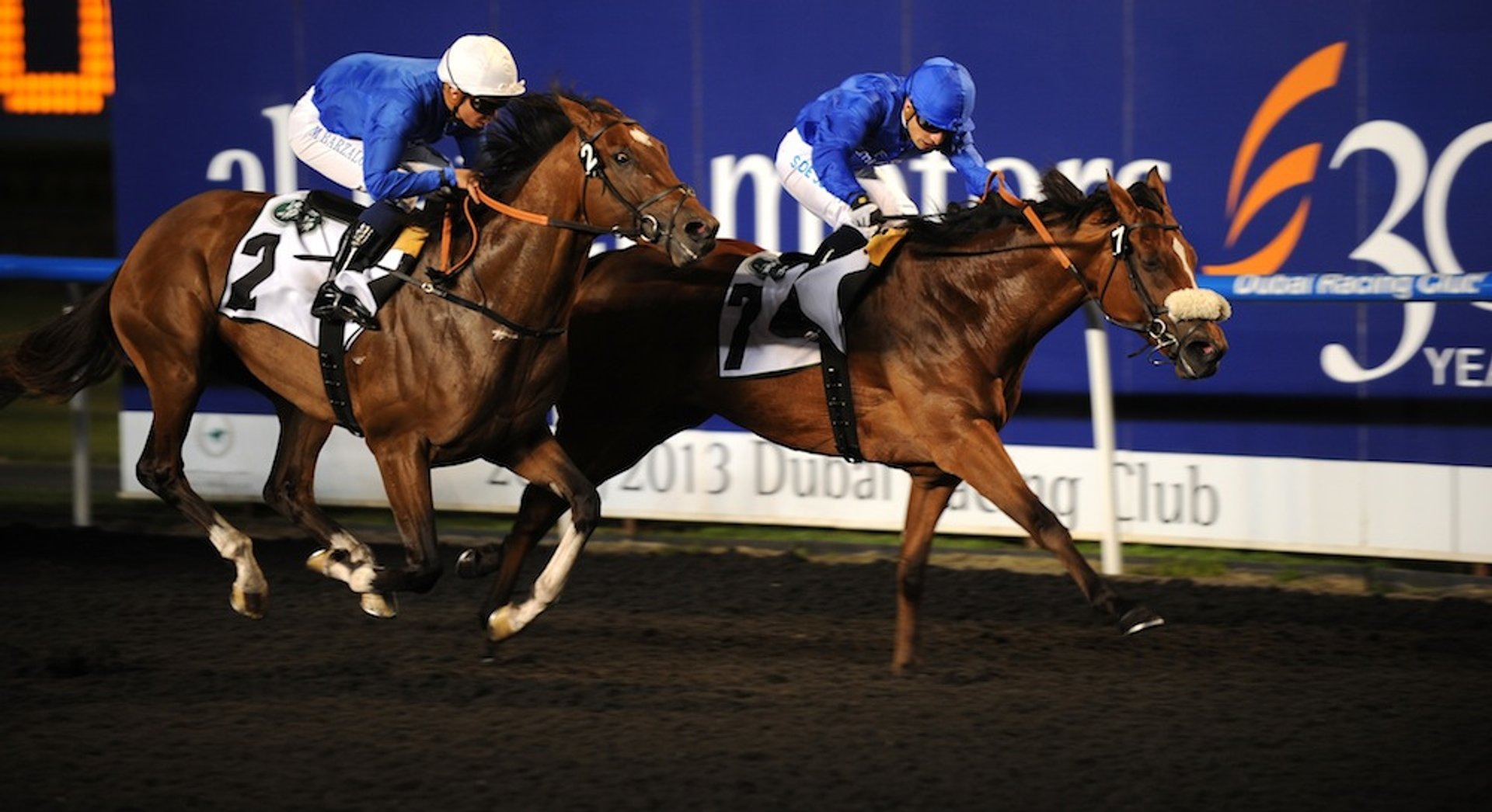 Domestic Horse Racing Season in Dubai - Best Time