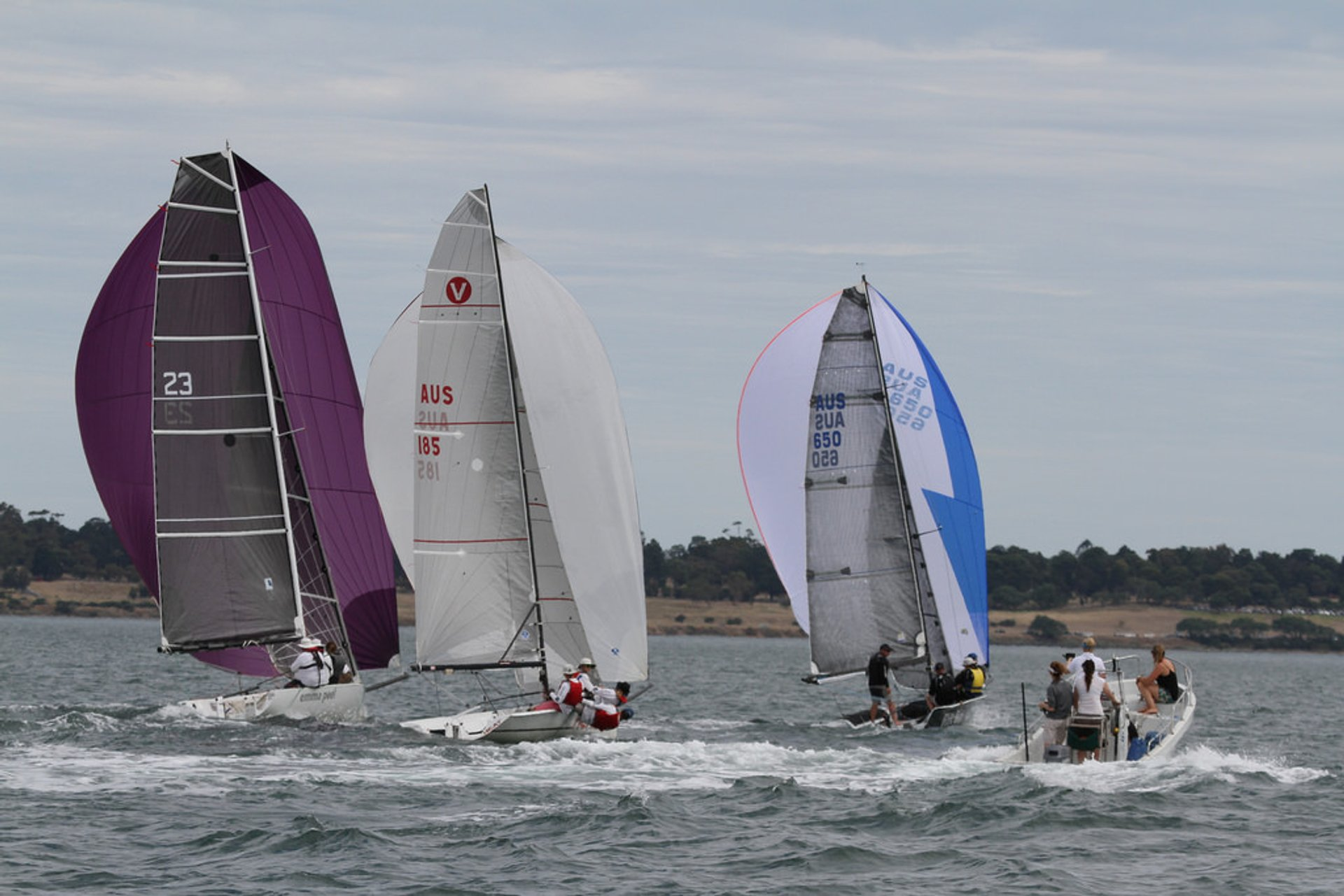 Festival of Sails in Victoria 2020 - Best Time