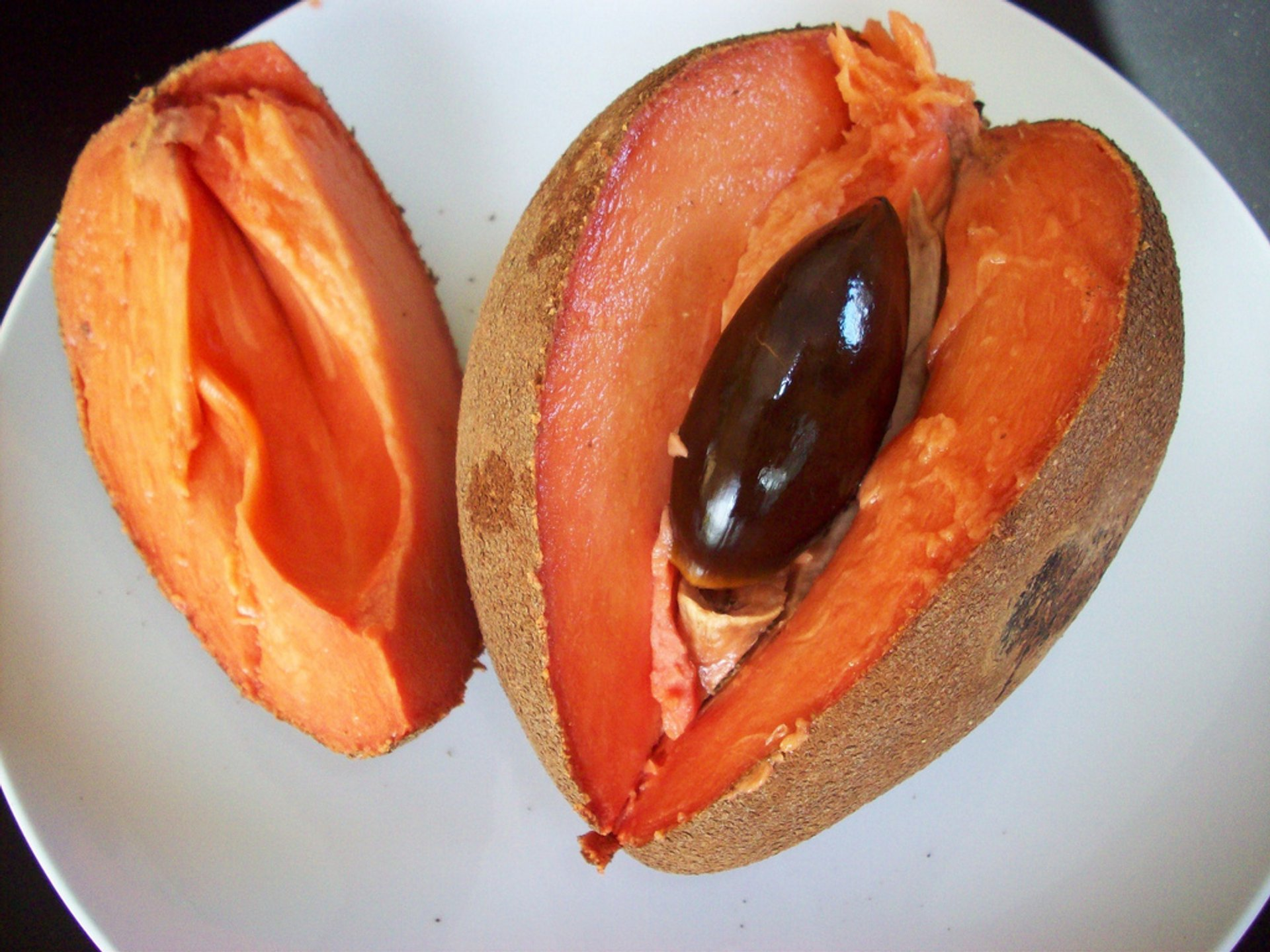 Mamey Sapote Harvest in Miami 2019 - Best Time