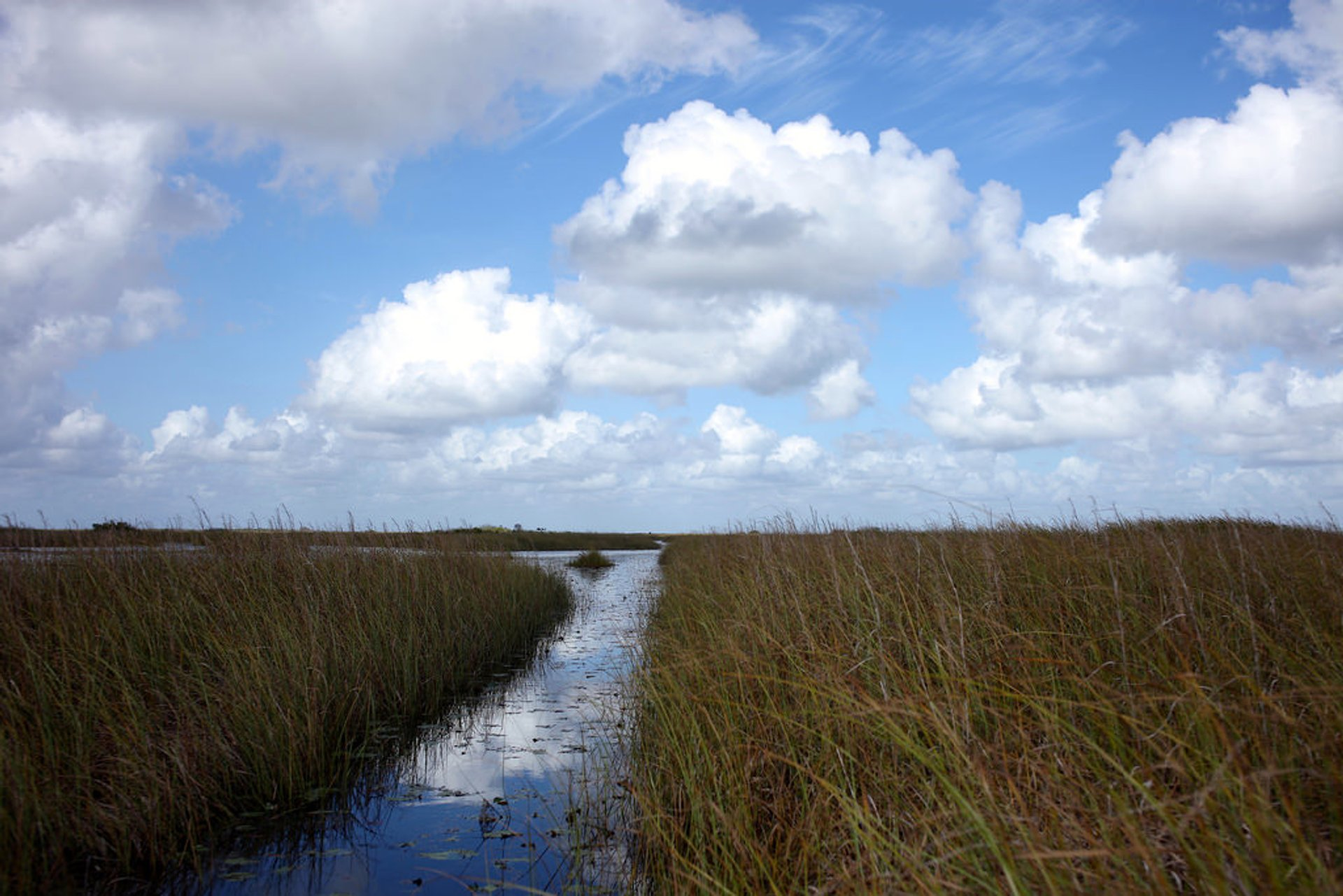 Everglades Boating Adventure in Miami - Best Season 2019