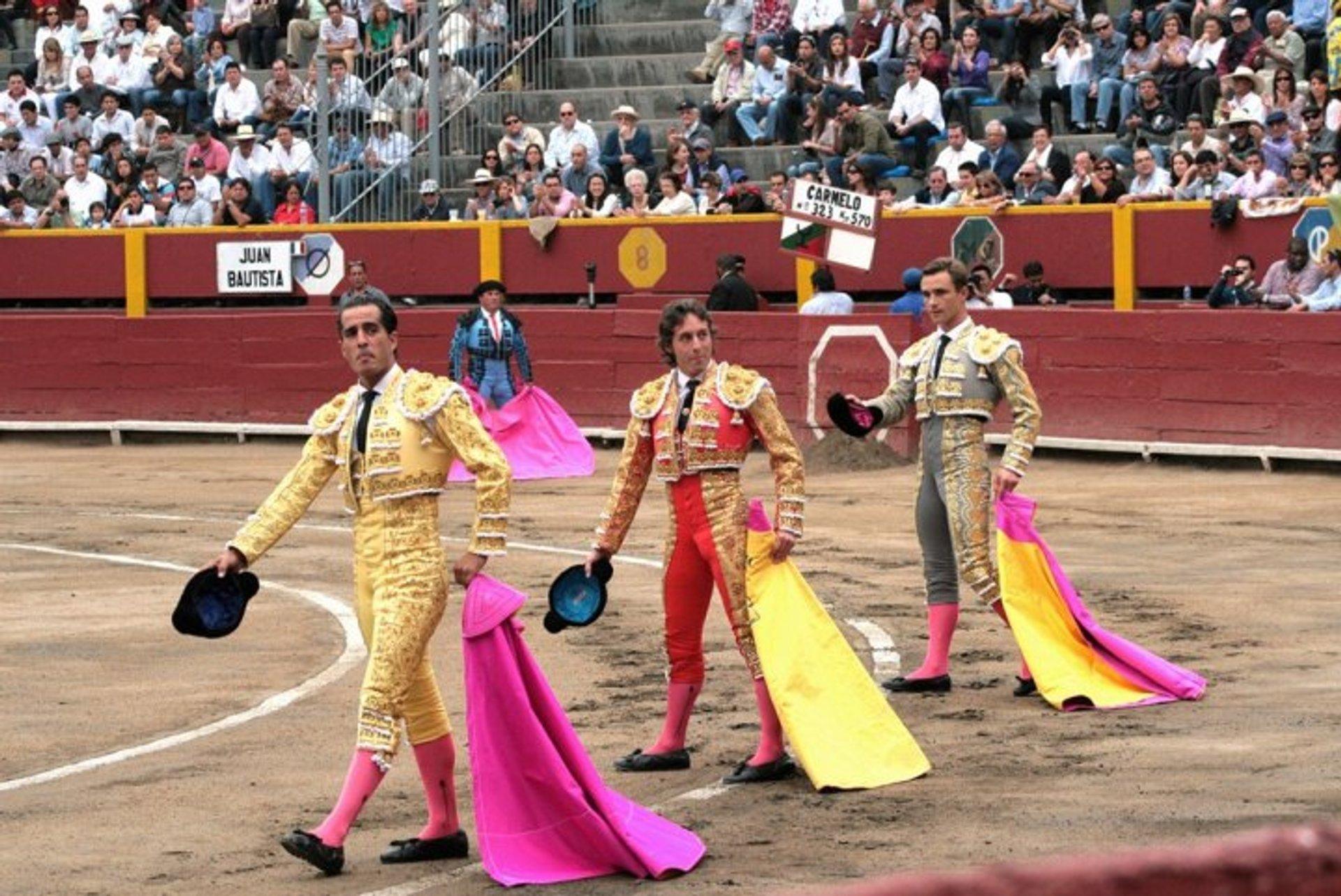 Bullfighting Season in Lima in Peru 2019 - Best Time