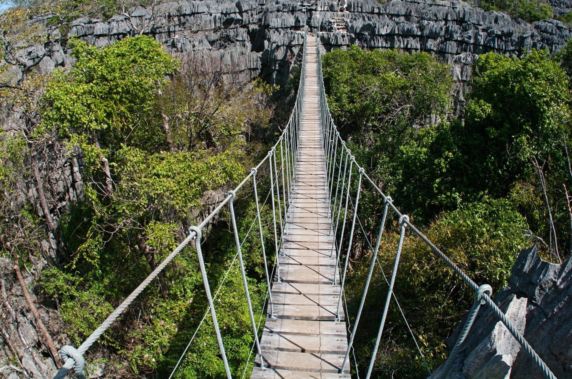 Rope Bridge in the Tsingy of Ankarana 2019
