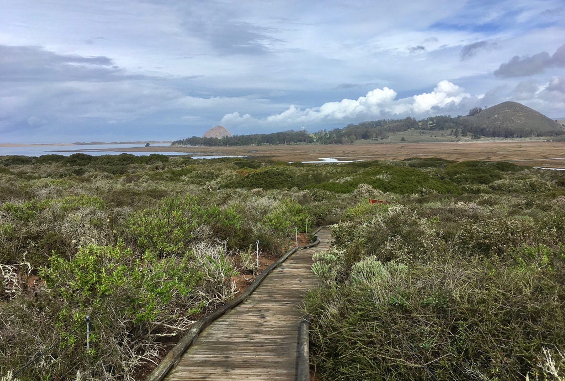 Elfin Forest Recreational Reserve in San Diego - Best Season 2020