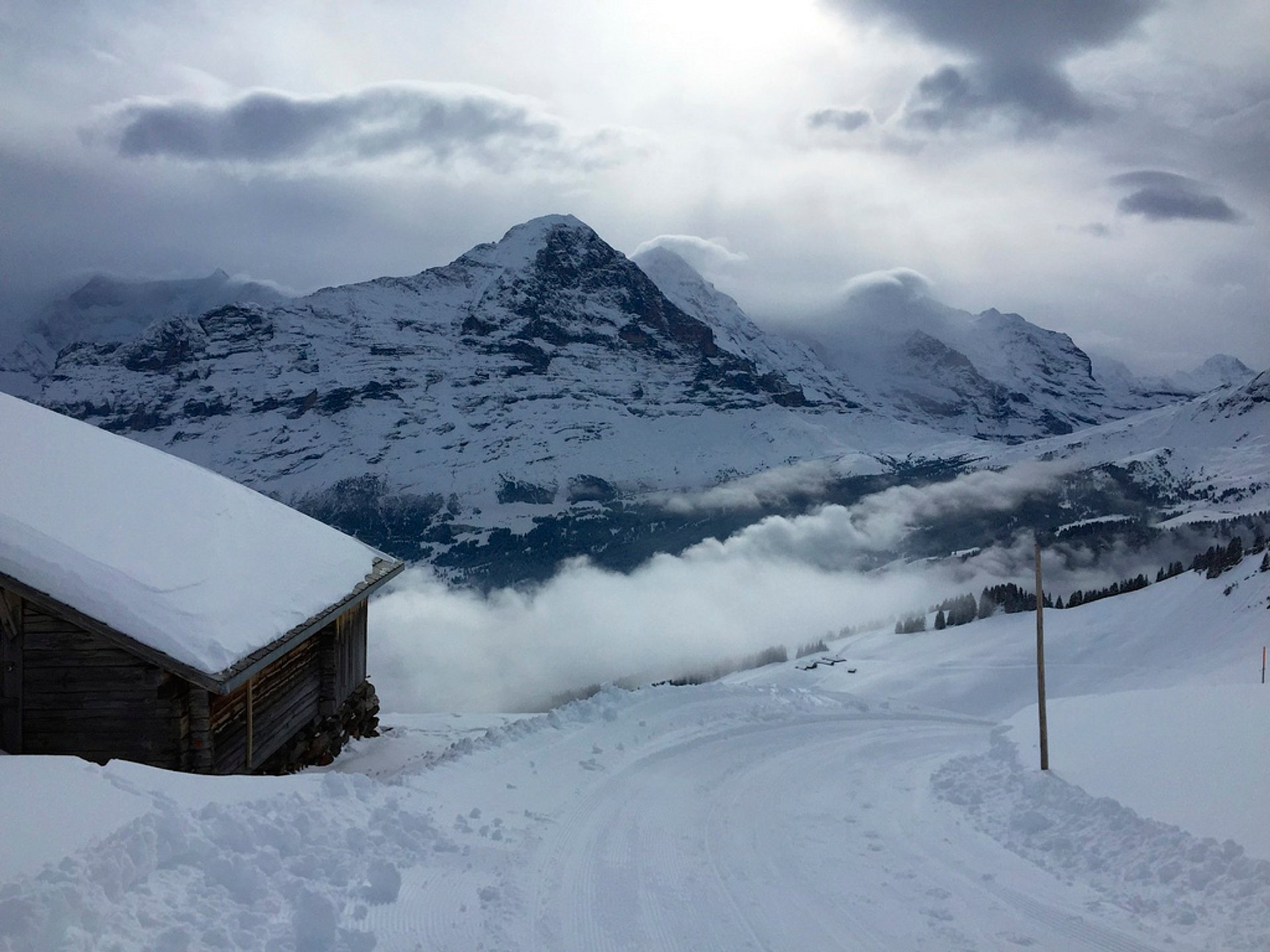 Faulhorn-Grindelwald​ Toboggan in Switzerland - Best Season 2020