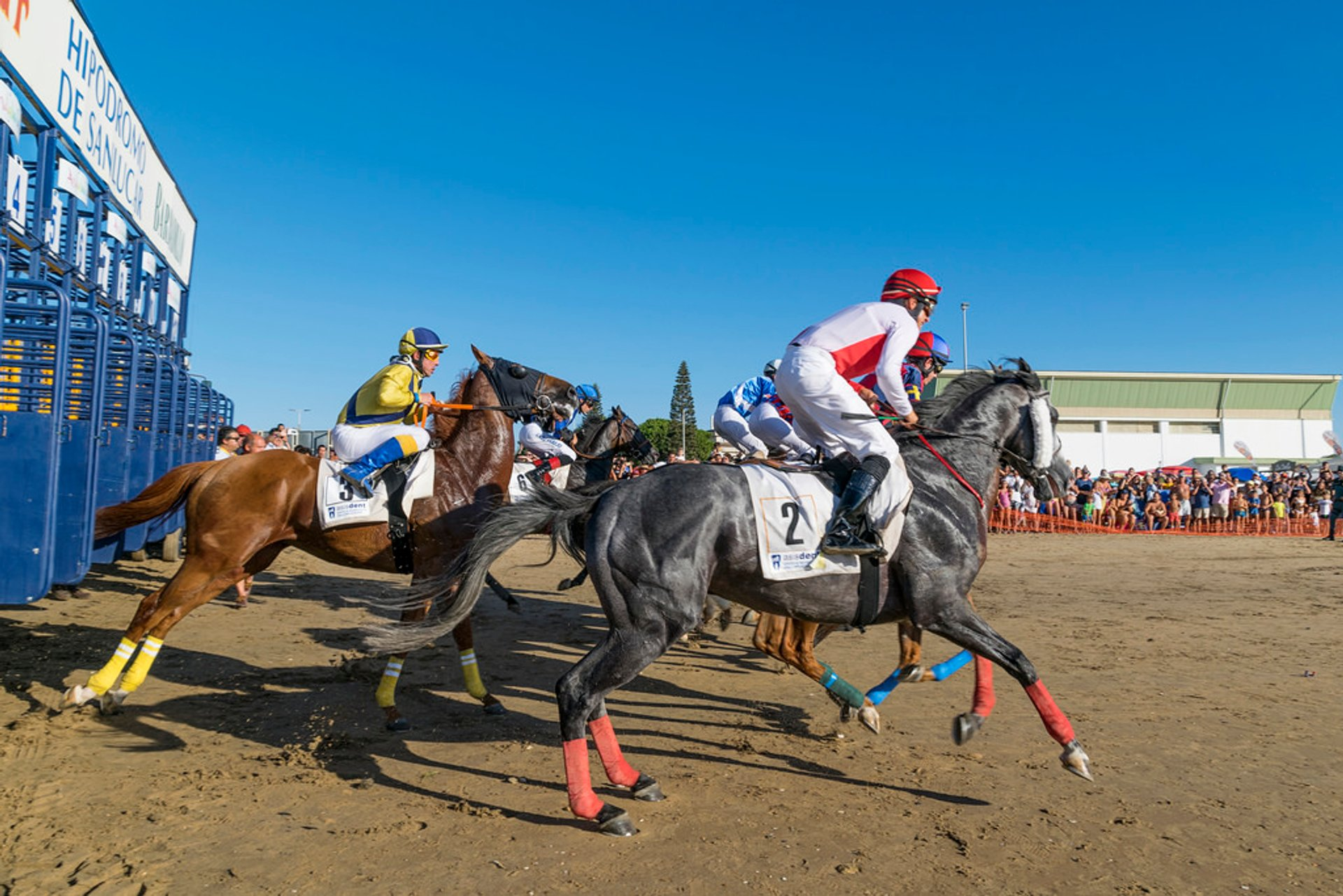 Sanlúcar Horse Racing in Spain - Best Season