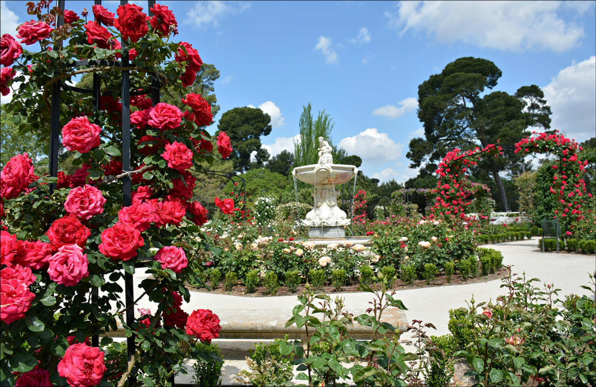La Rosaleda (Rose Garden) in Madrid - Best Season 2020
