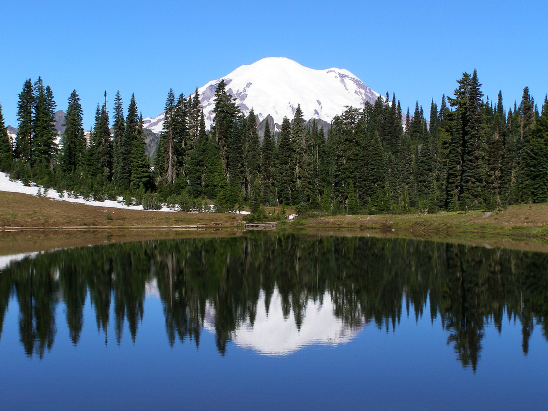 Mount Rainier reflected in Tipsoo Lake 2020