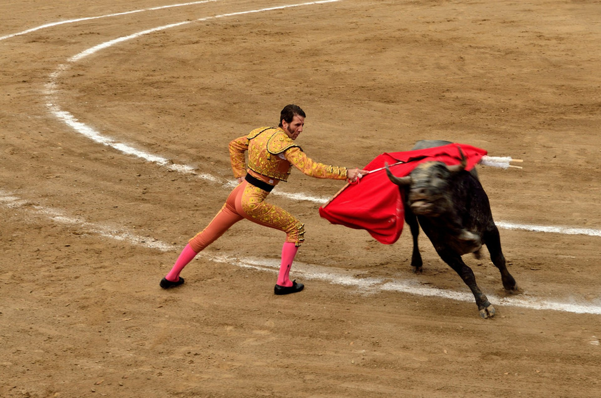 Bullfights in Mexico 2020 - Best Time