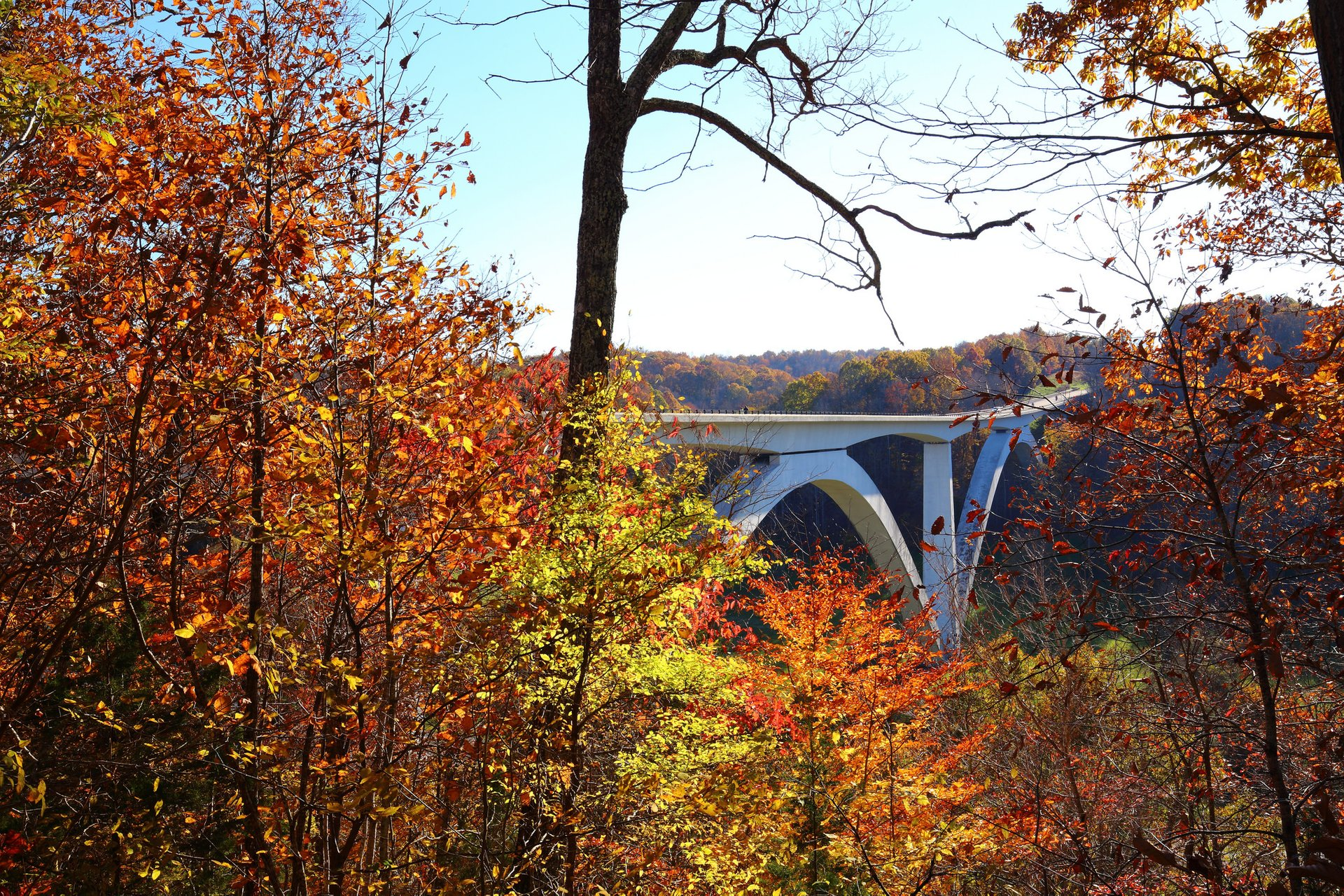 Views of the Natchez Parkway Bridge and it's surrounding in autumn 2019