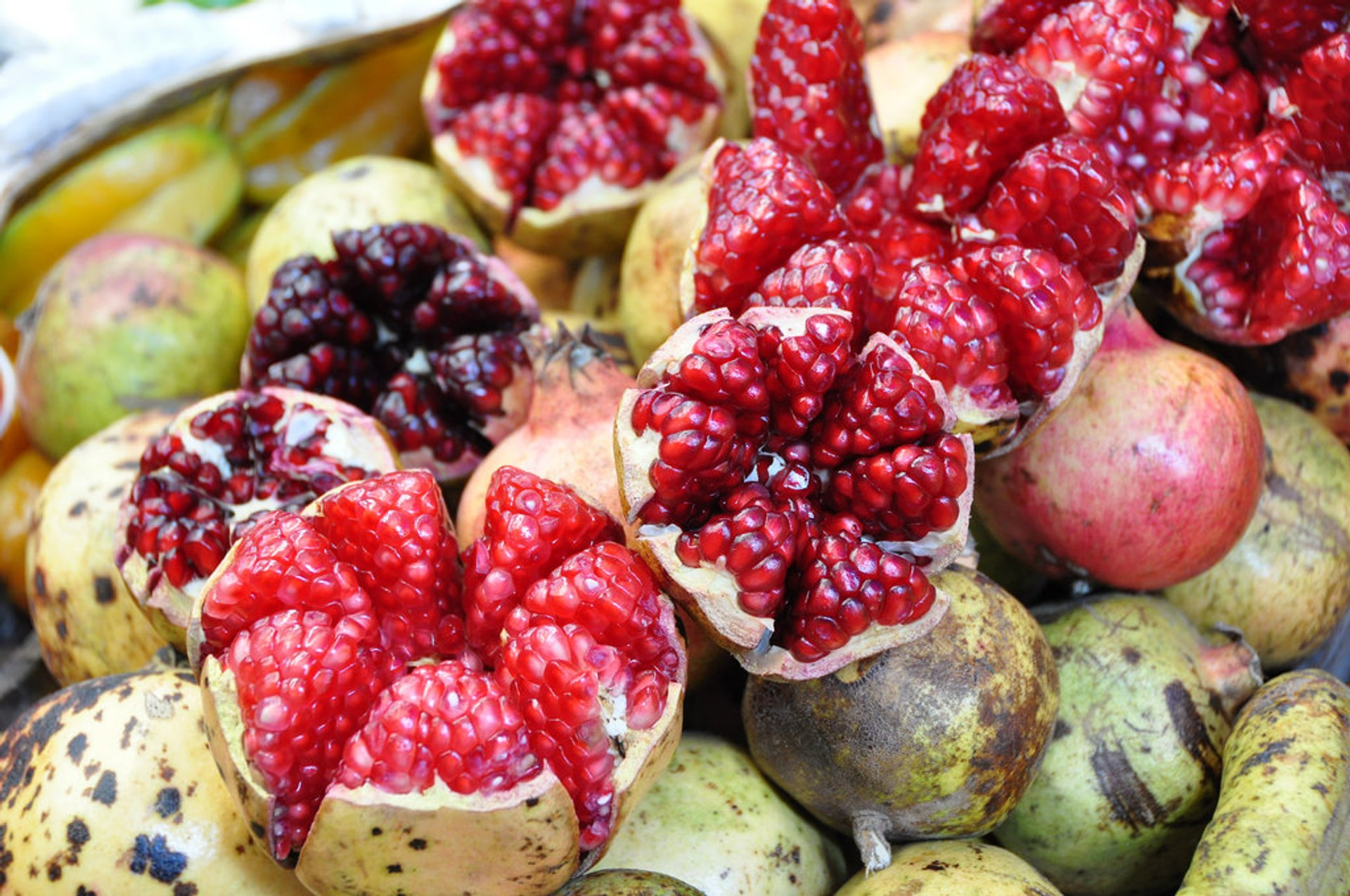 Granadas or Pomegranates in Mexico 2019 - Best Time