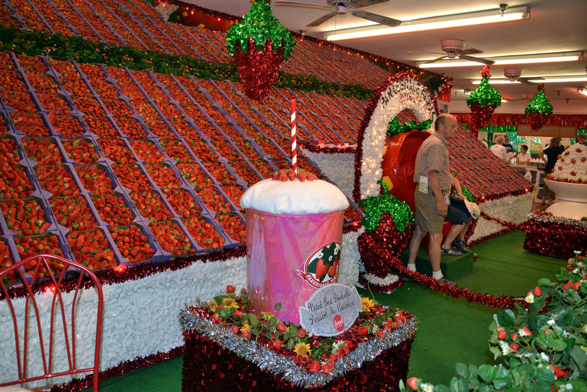 Florida Strawberry Festival in Florida - Best Season 2020