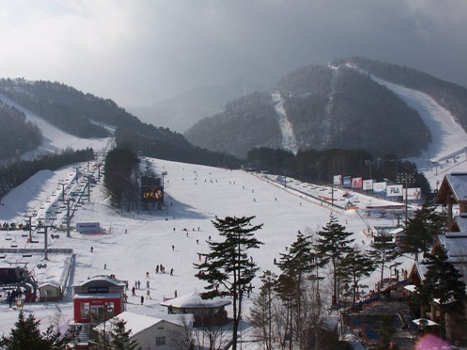 Skiing and Snowboarding in Seoul - Best Season 2019