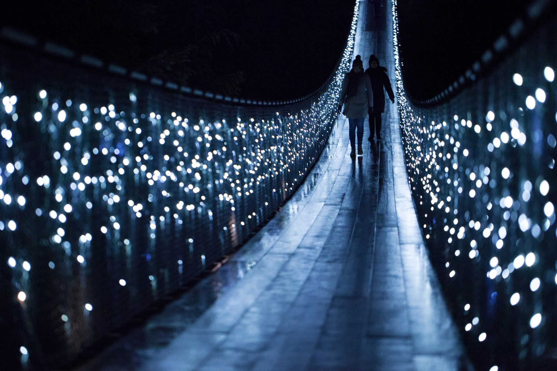 Walking across Capilano Suspension Bridge with Canyon Lights 2020
