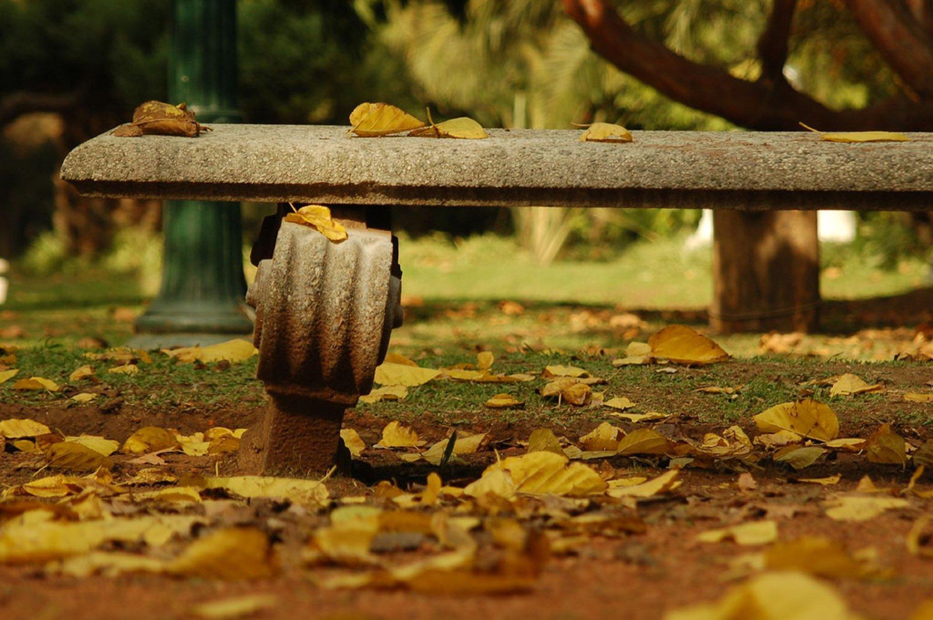 Autumn in Buenos Aires - Best Season 2020