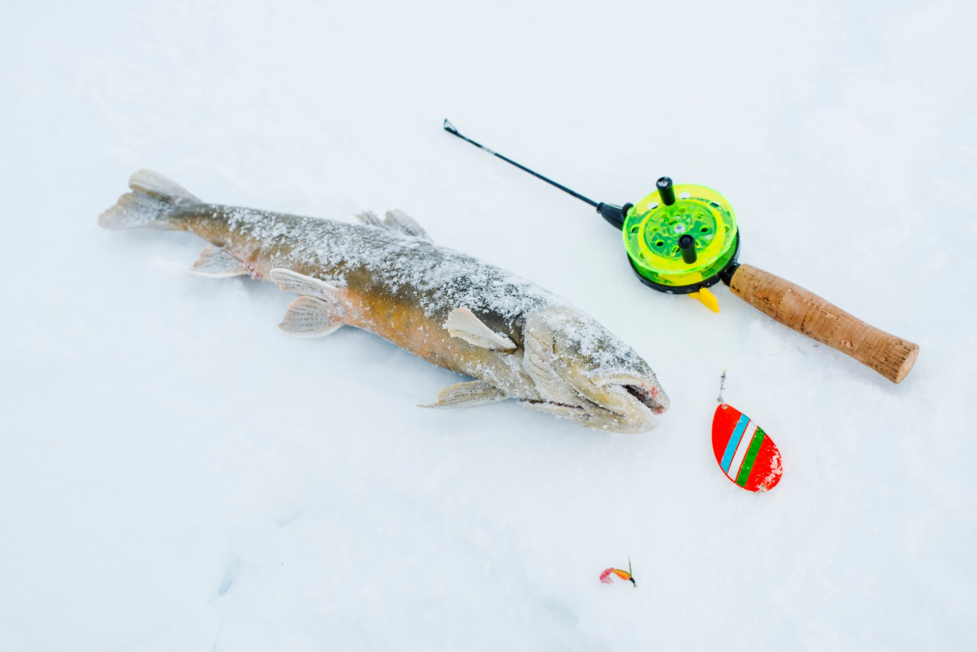 Ice Fishing in Finland 2020 - Best Time