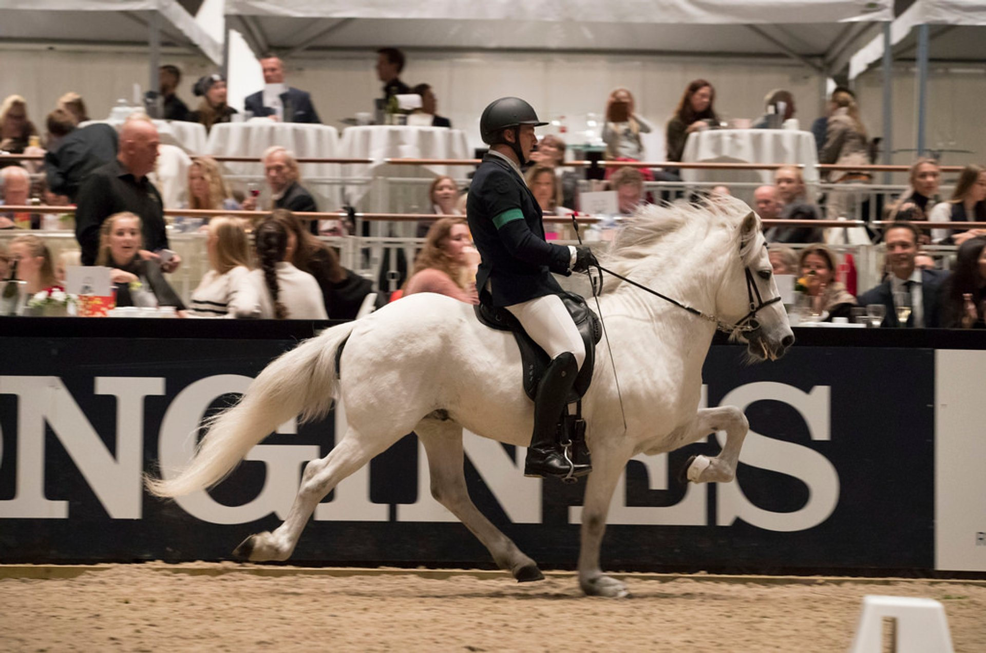 Kingsland Oslo Horse Show in Oslo - Best Season
