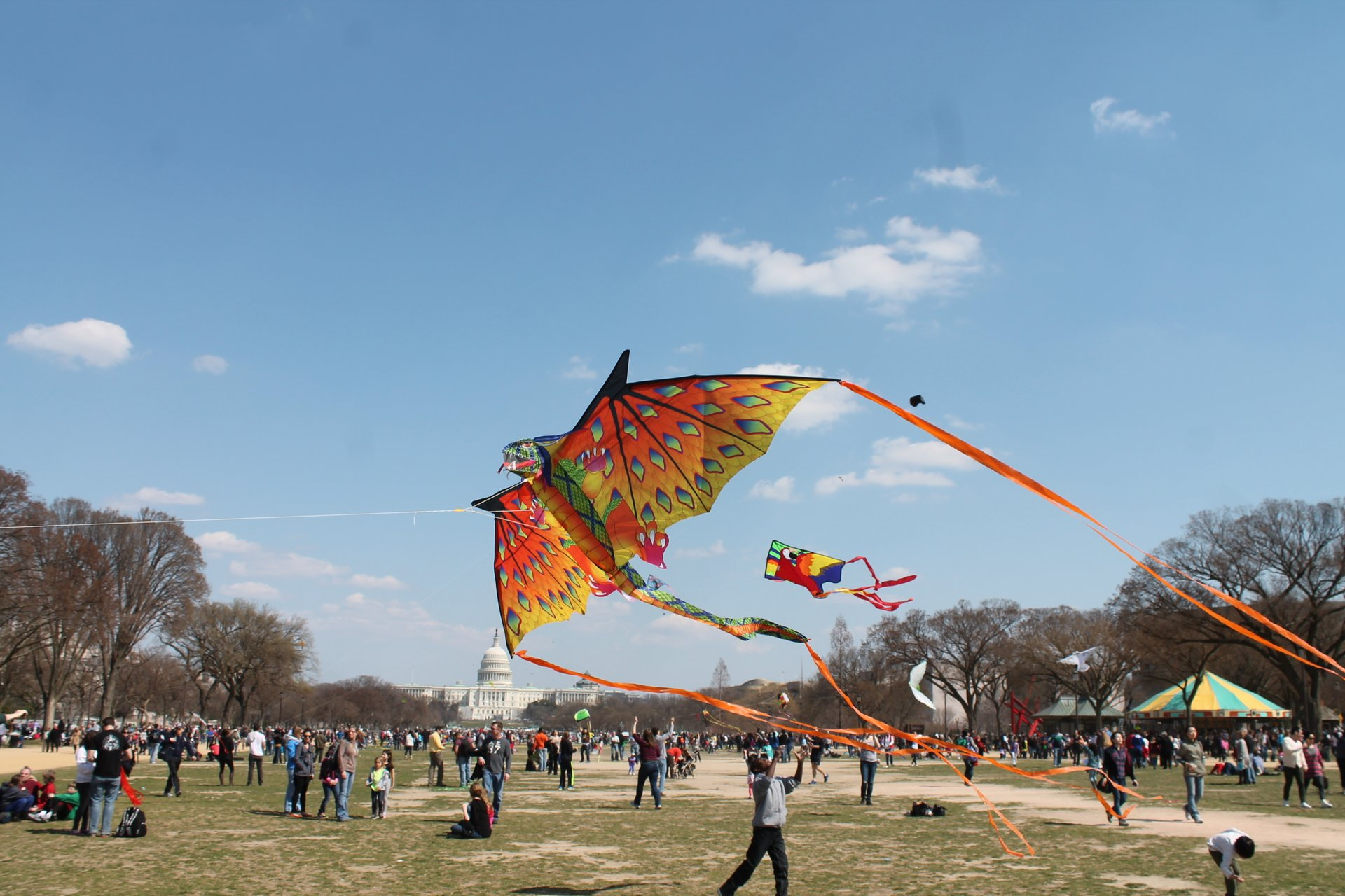 Blossom Kite Festival 2020